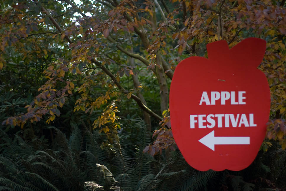UBC Apple Festival in Vancouver - Best Time