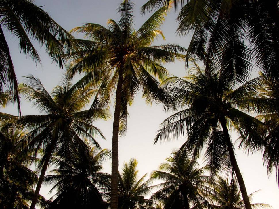 South Vietnam Dry Season in Vietnam - Best Time