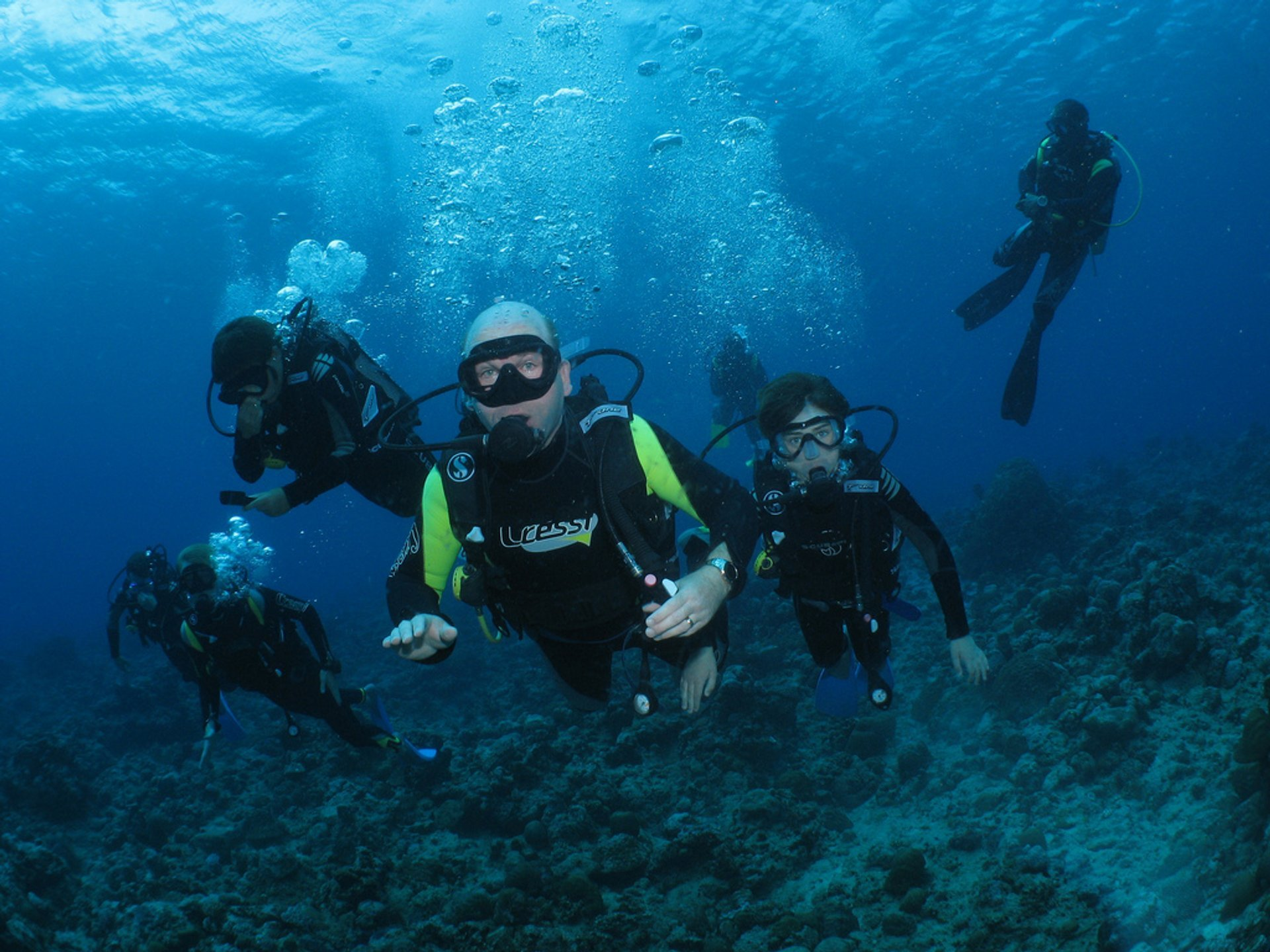 Diving and Snorkelling in Mauritius 2020 - Best Time