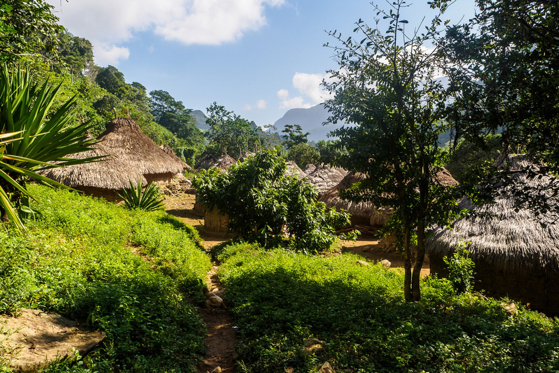 Best time for Ciudad Perdida Trek in Colombia 2020
