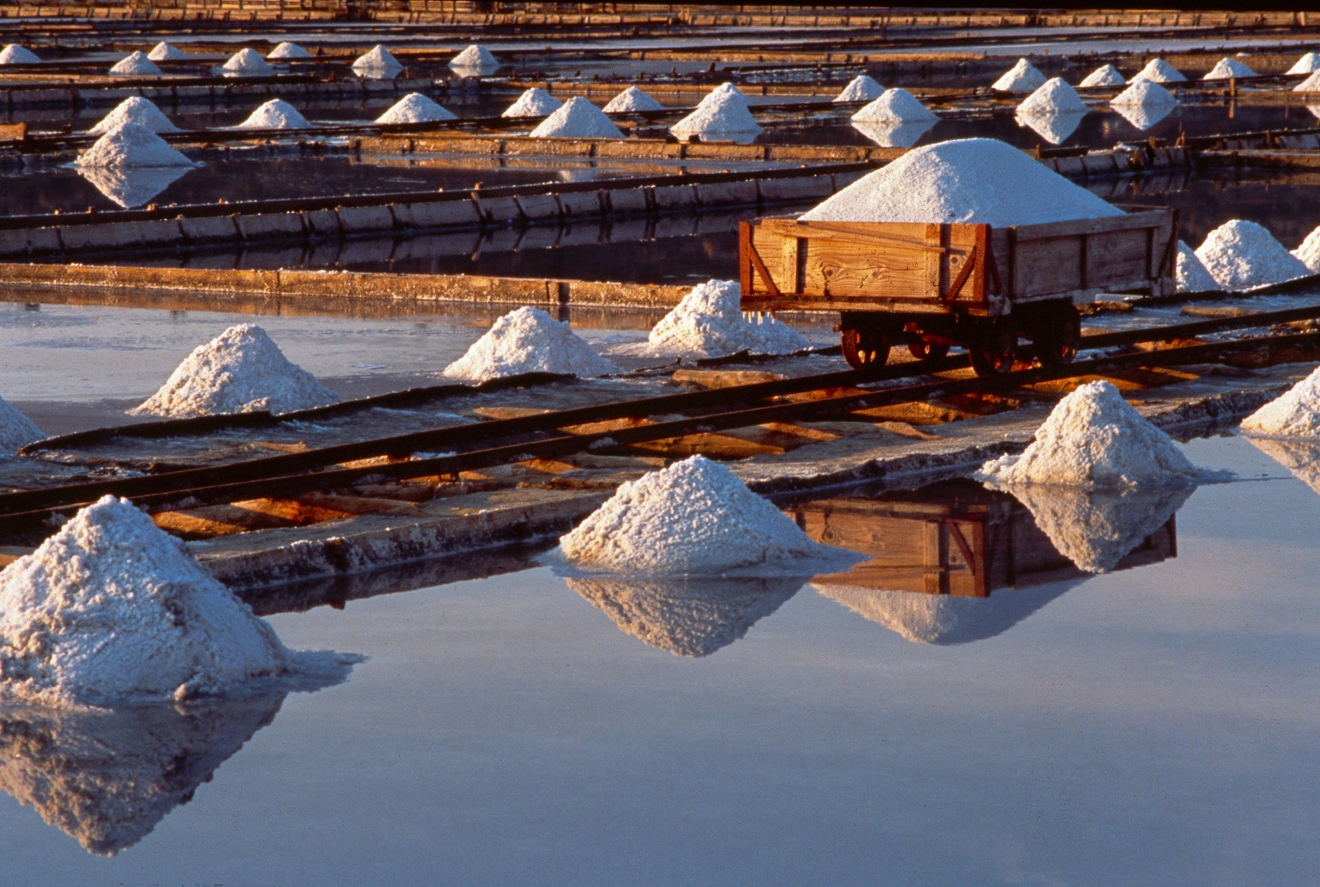 Salt Harvest in Slovenia 2020 - Best Time