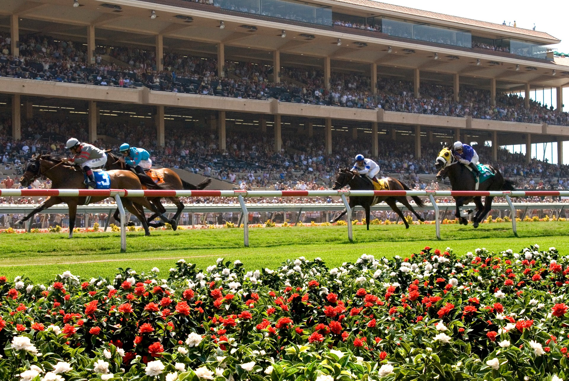 Best time to see Del Mar Racing Season 2020