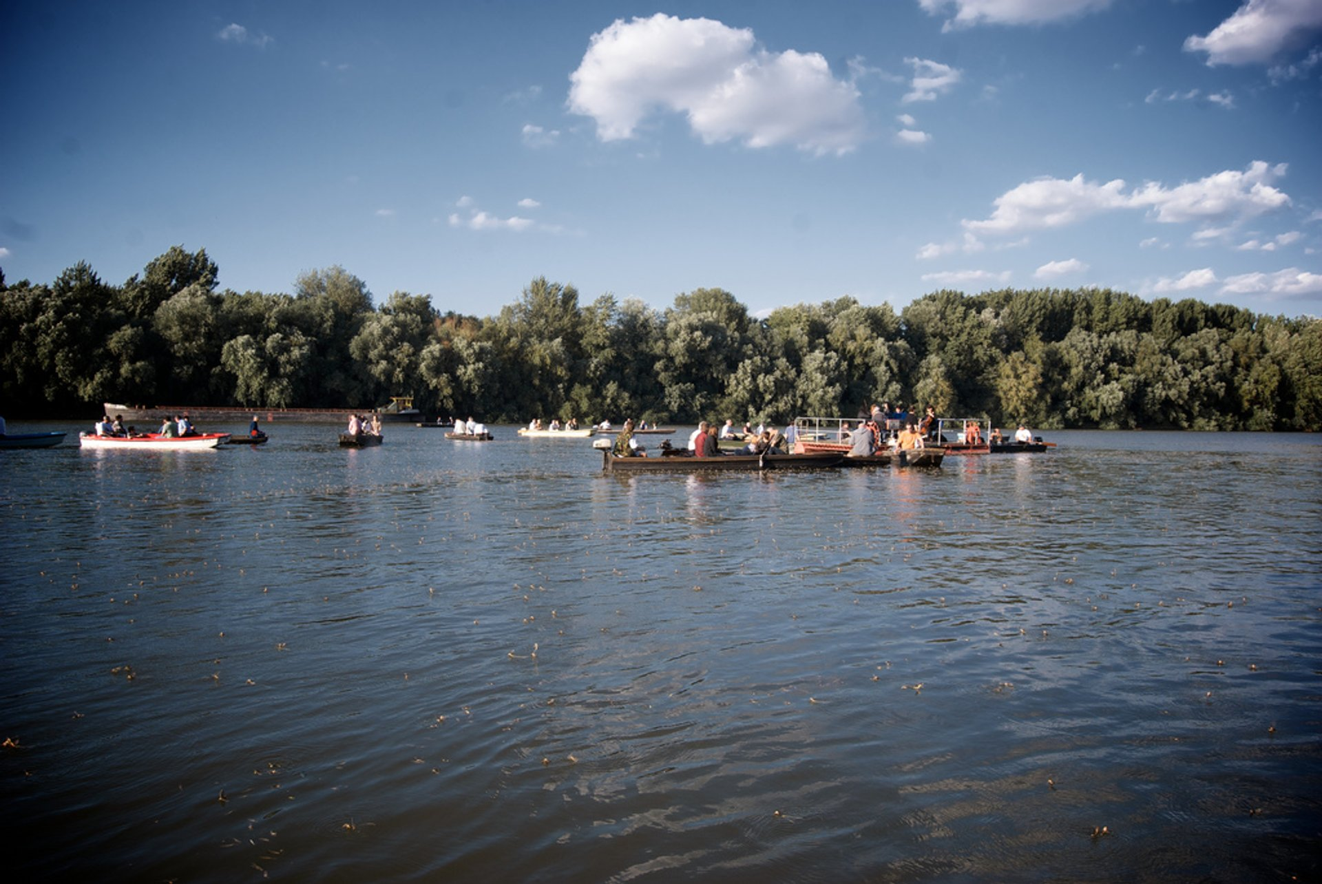 Best time for Blooming of the Tisza in Hungary 2020