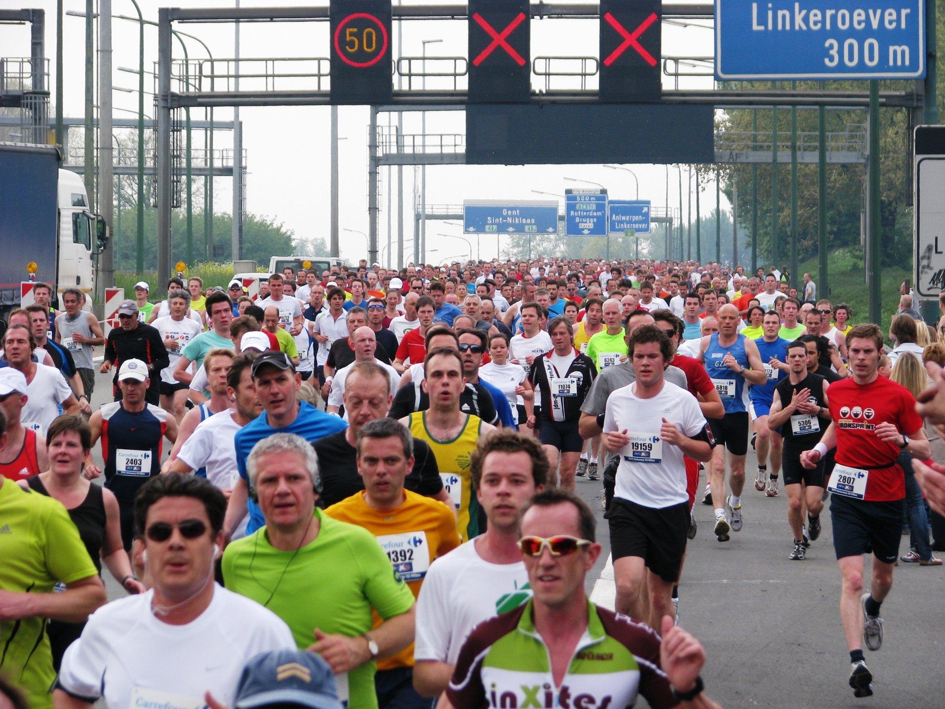 AG Antwerp 10 Miles & Marathon in Belgium 2020 - Best Time