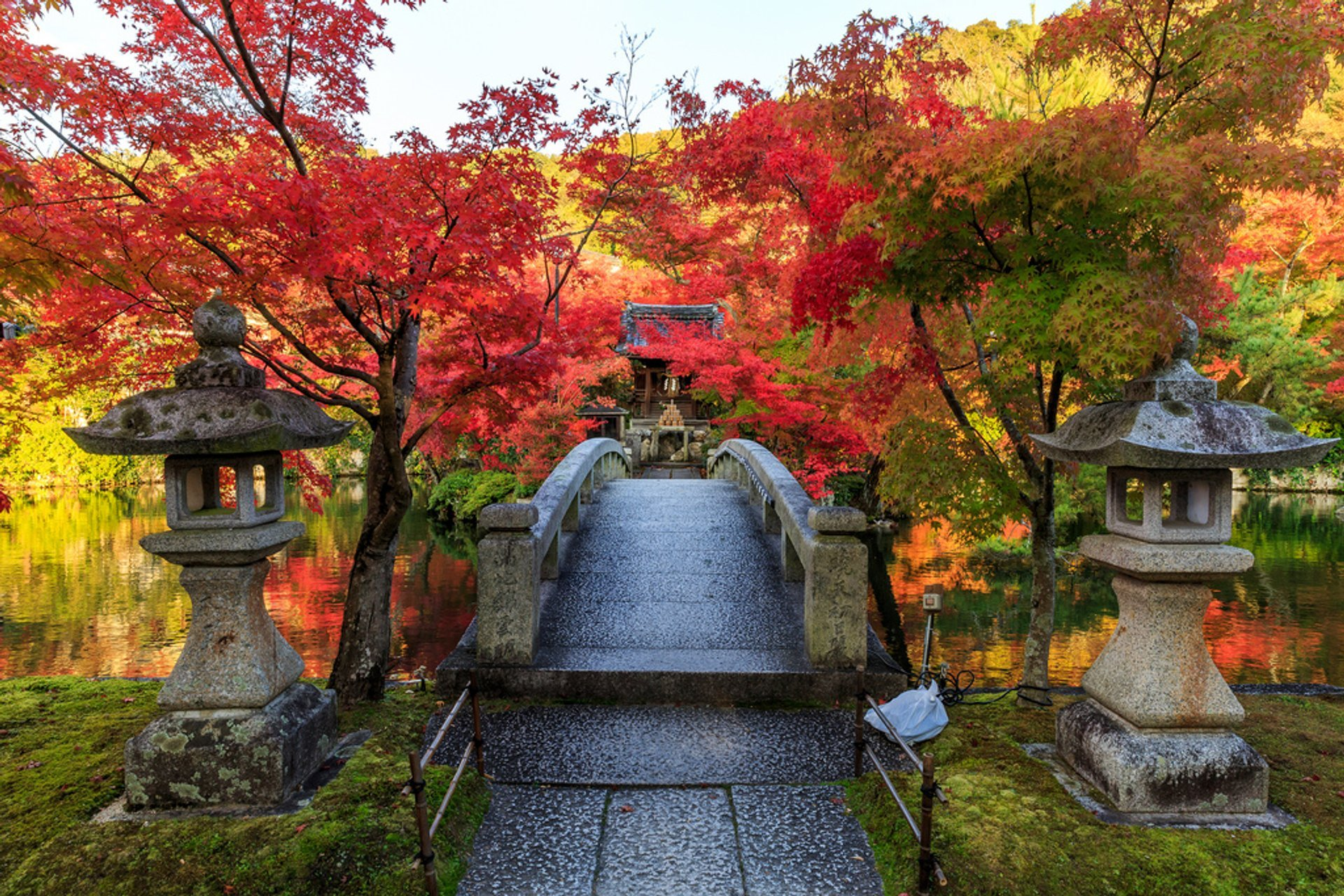 Best time to see Autumn Foliage (Kōyō) in Kyoto 2020