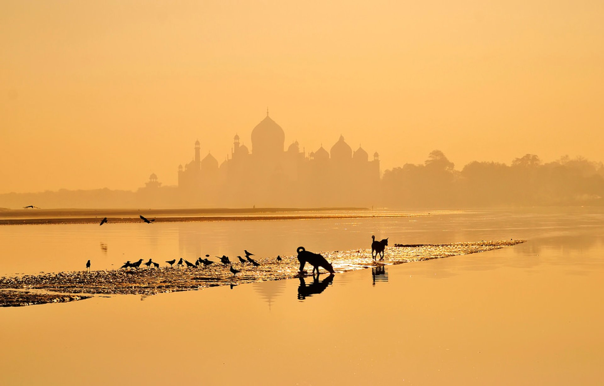 Best time for Sunrise and Sunset near Taj Mahal in Taj Mahal and Agra