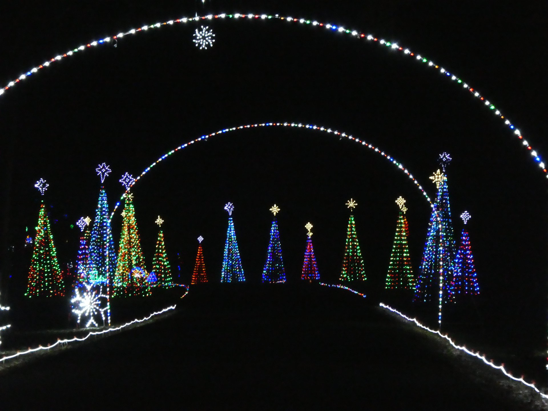 Celebration in Lights at Newport News Park 2020
