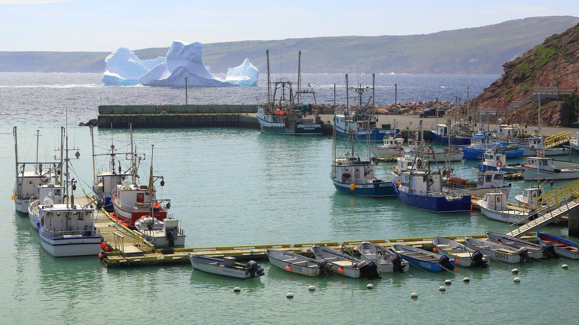 Bay De Verde 2020