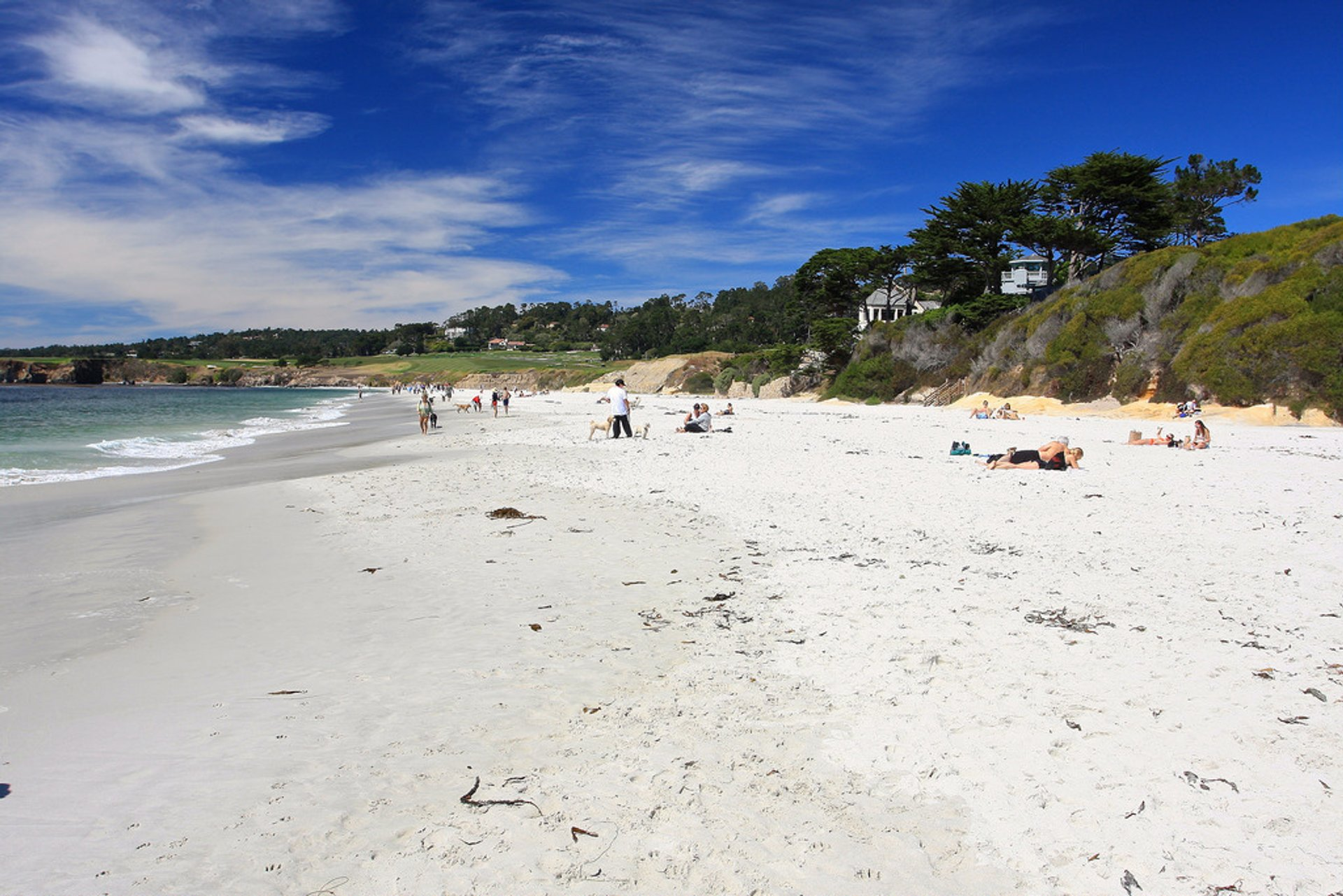 Carmel Beach 2020
