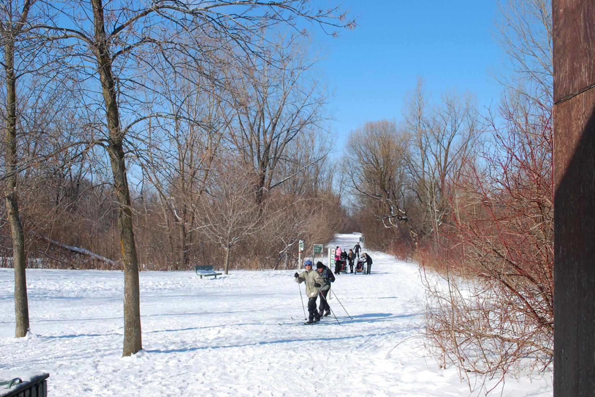 Winter picnic at Bois-de-Liesse 2020