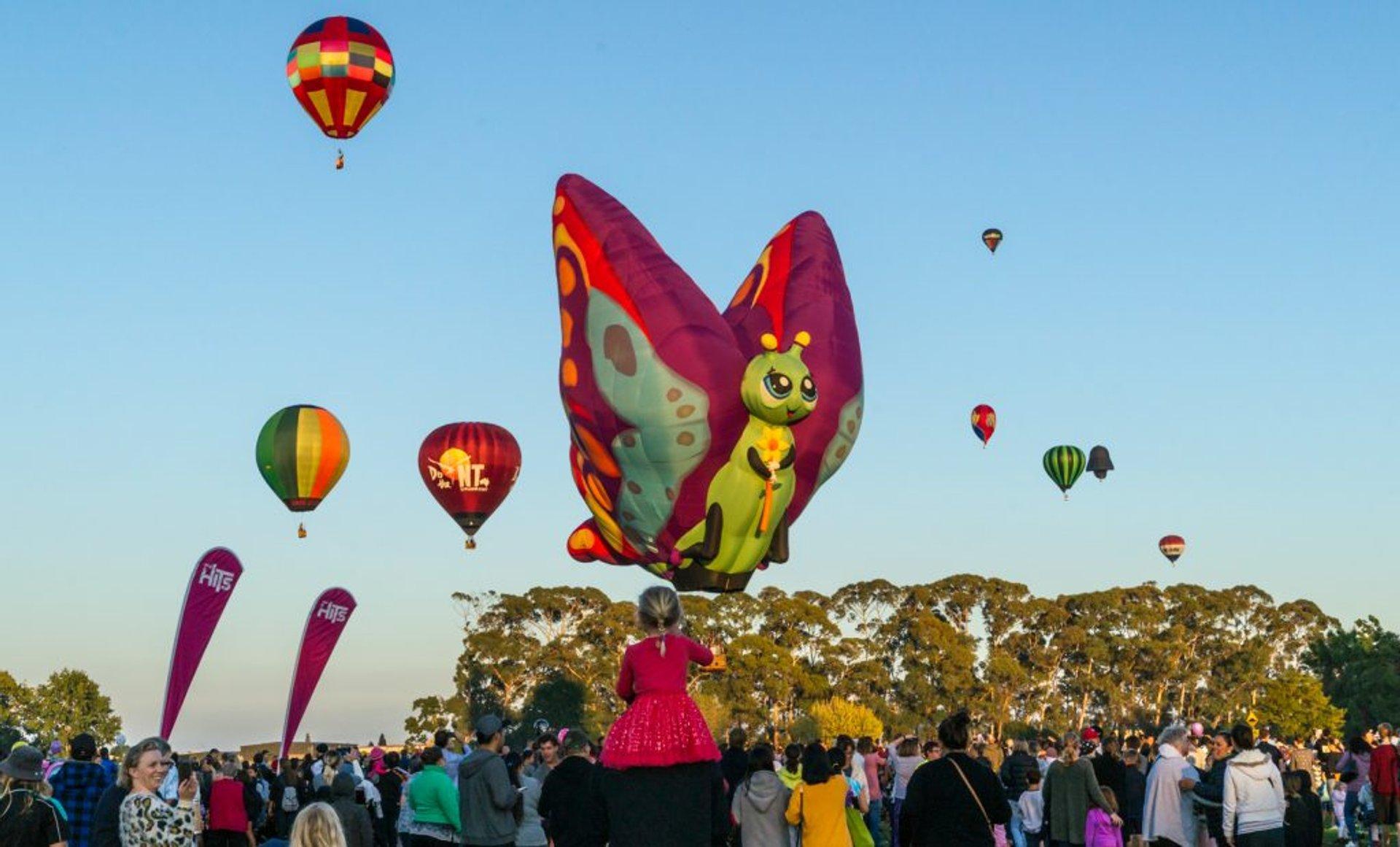 Balloons over Waikato in New Zealand - Best Season 2020