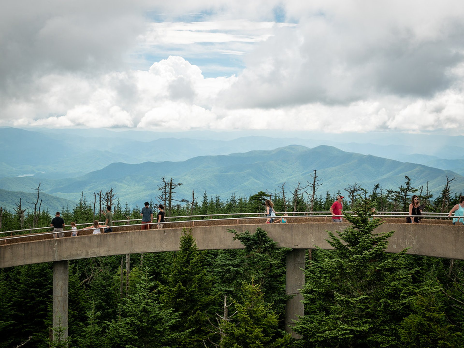 Clingmans Dome in North Carolina - Best Season 2019
