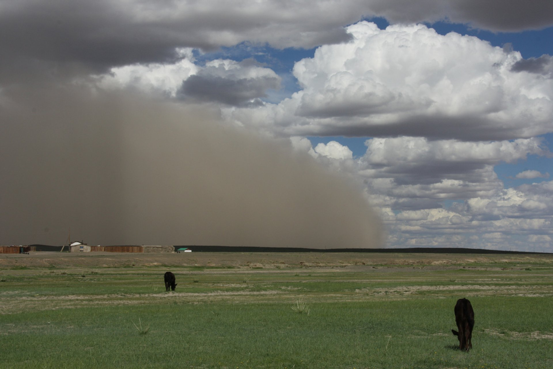 Sand and Dust Storms in Mongolia 2020 - Best Time