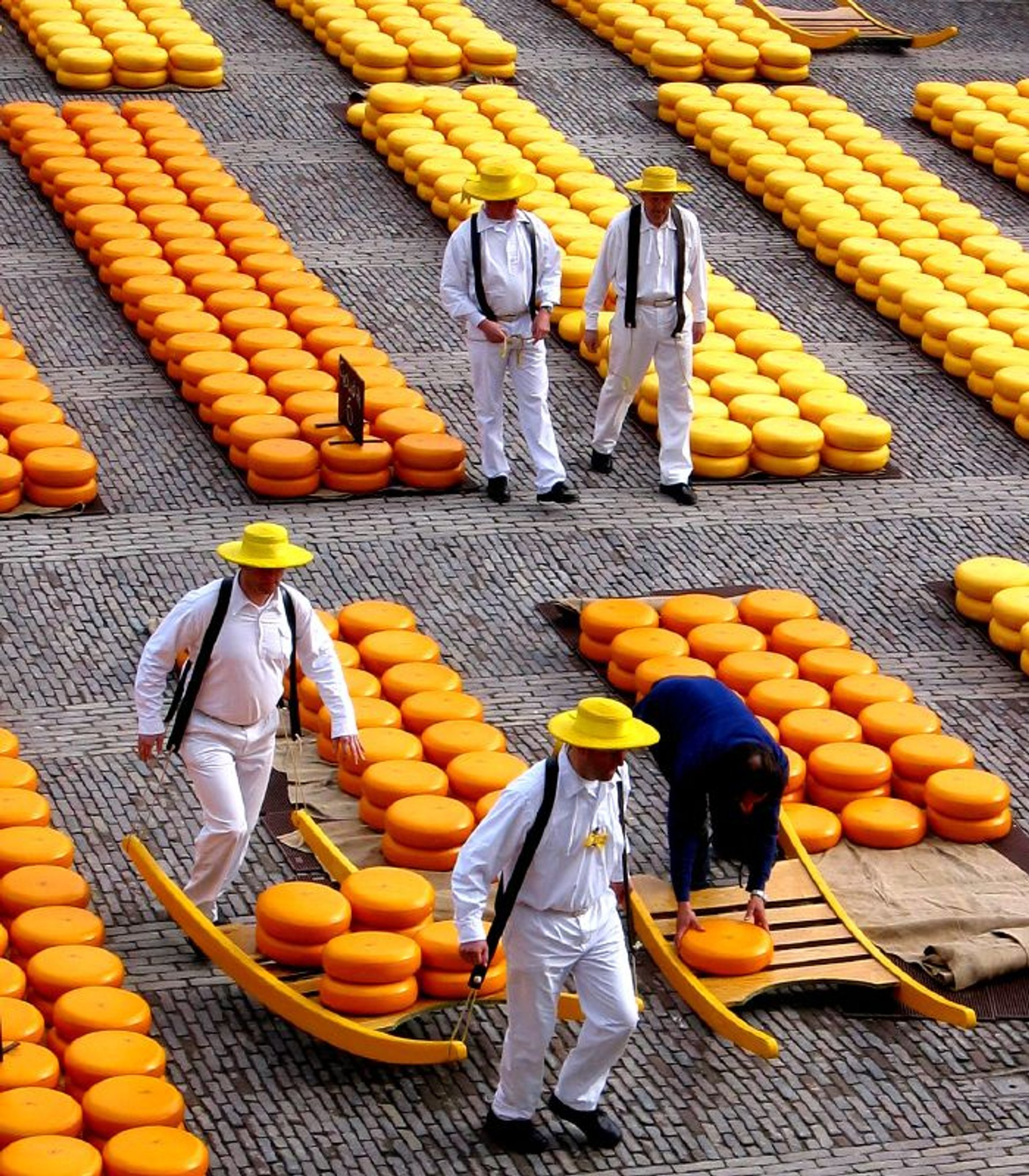 Alkmaar Cheese Market in The Netherlands - Best Season 2019