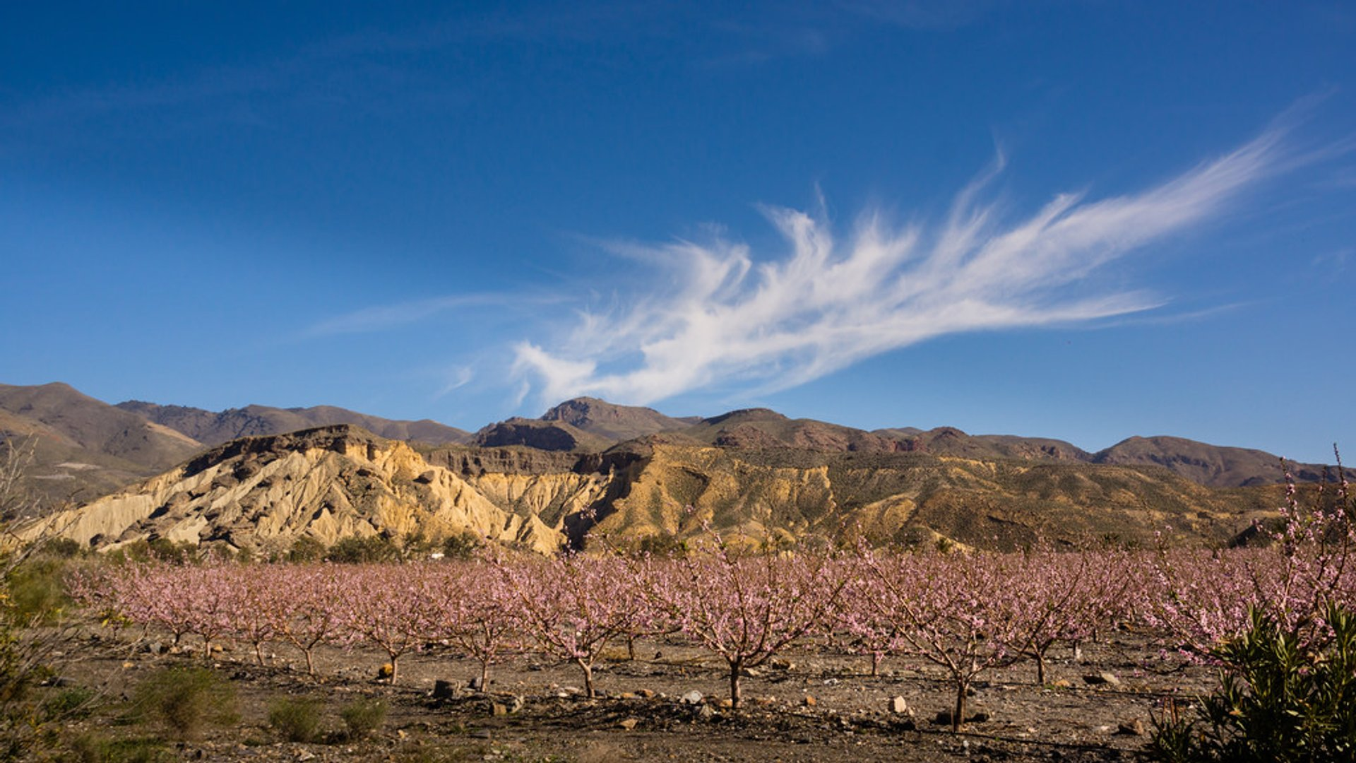 Best time for Tabernas, Europe's Only Desert in Spain 2019