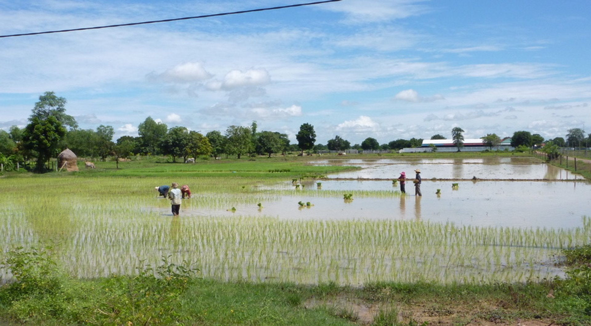 Wet Season in Cambodia 2020 - Best Time