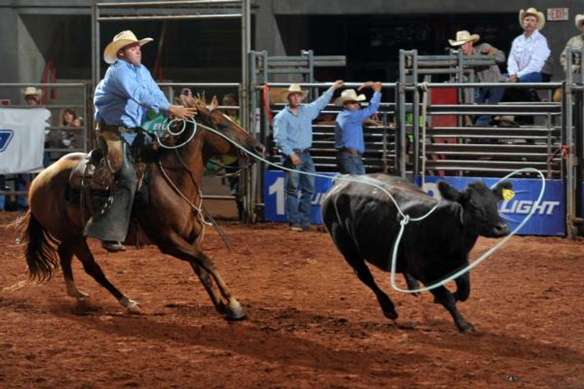 Texas Ranch Roundup in Texas 2019 - Best Time