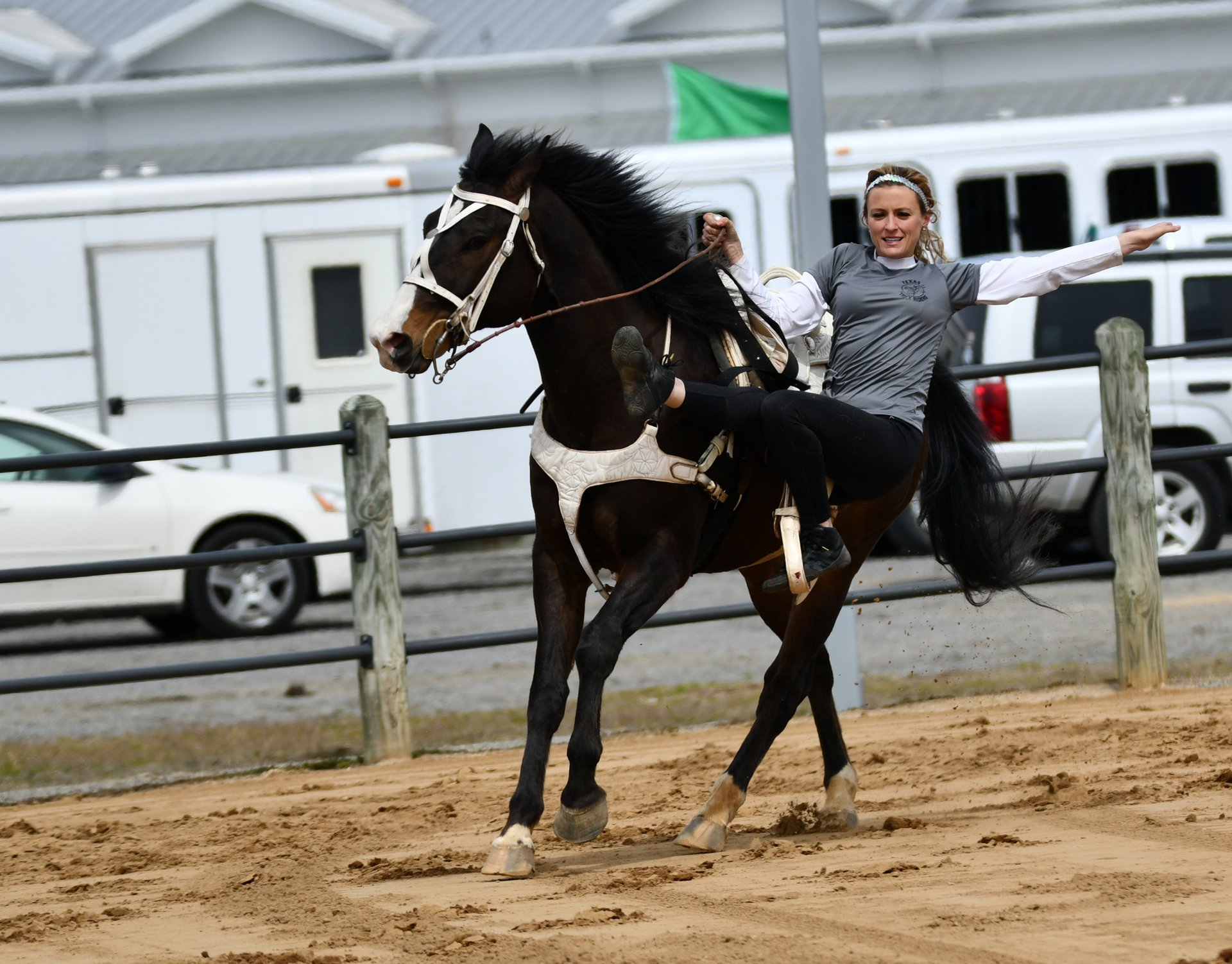 Virginia Horse Festival in Virginia - Best Season 2020