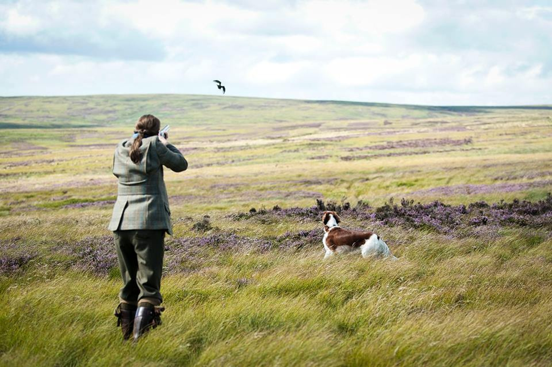 Hunting Season in Scotland - Best Season 2020