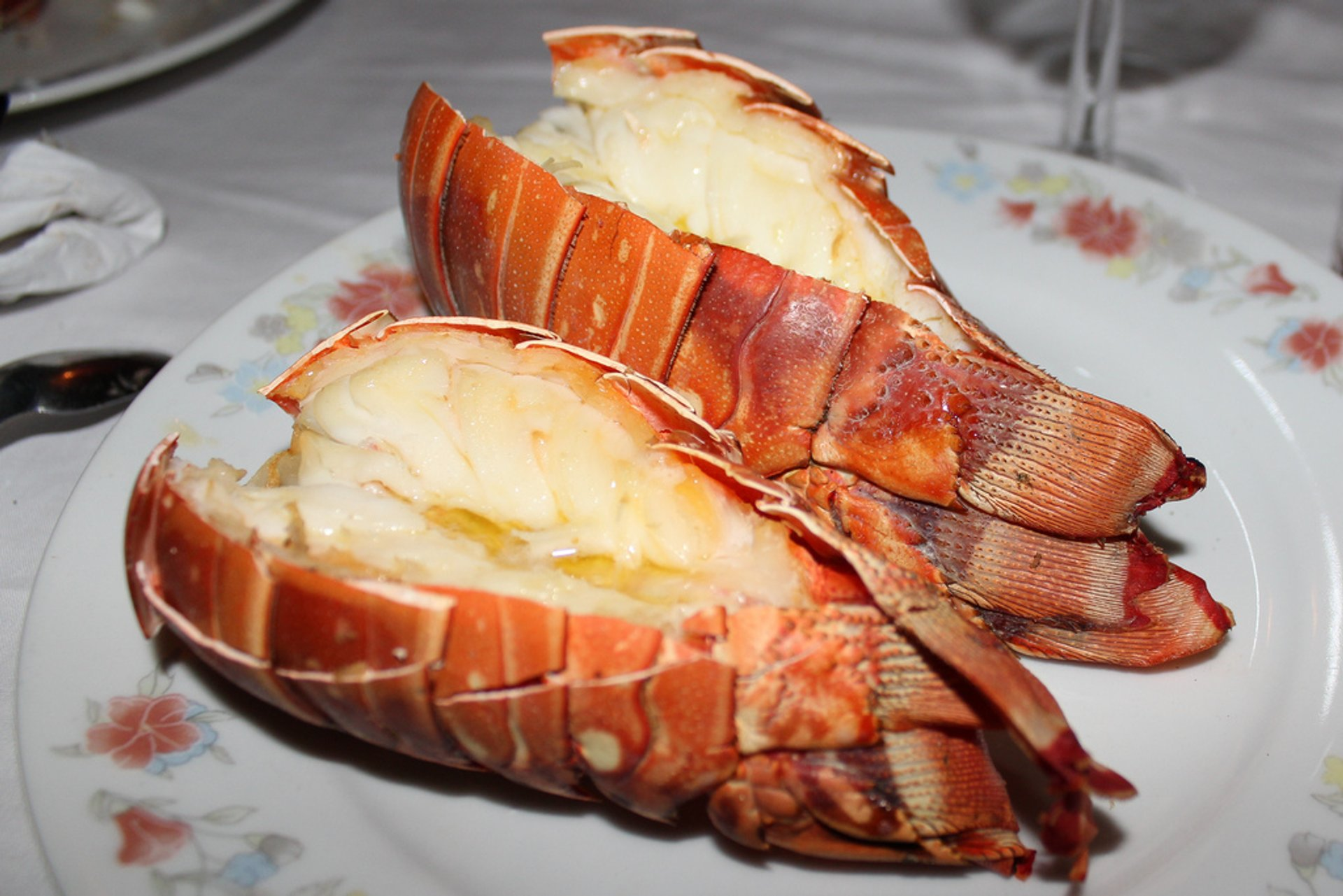 Lobster tails 2019