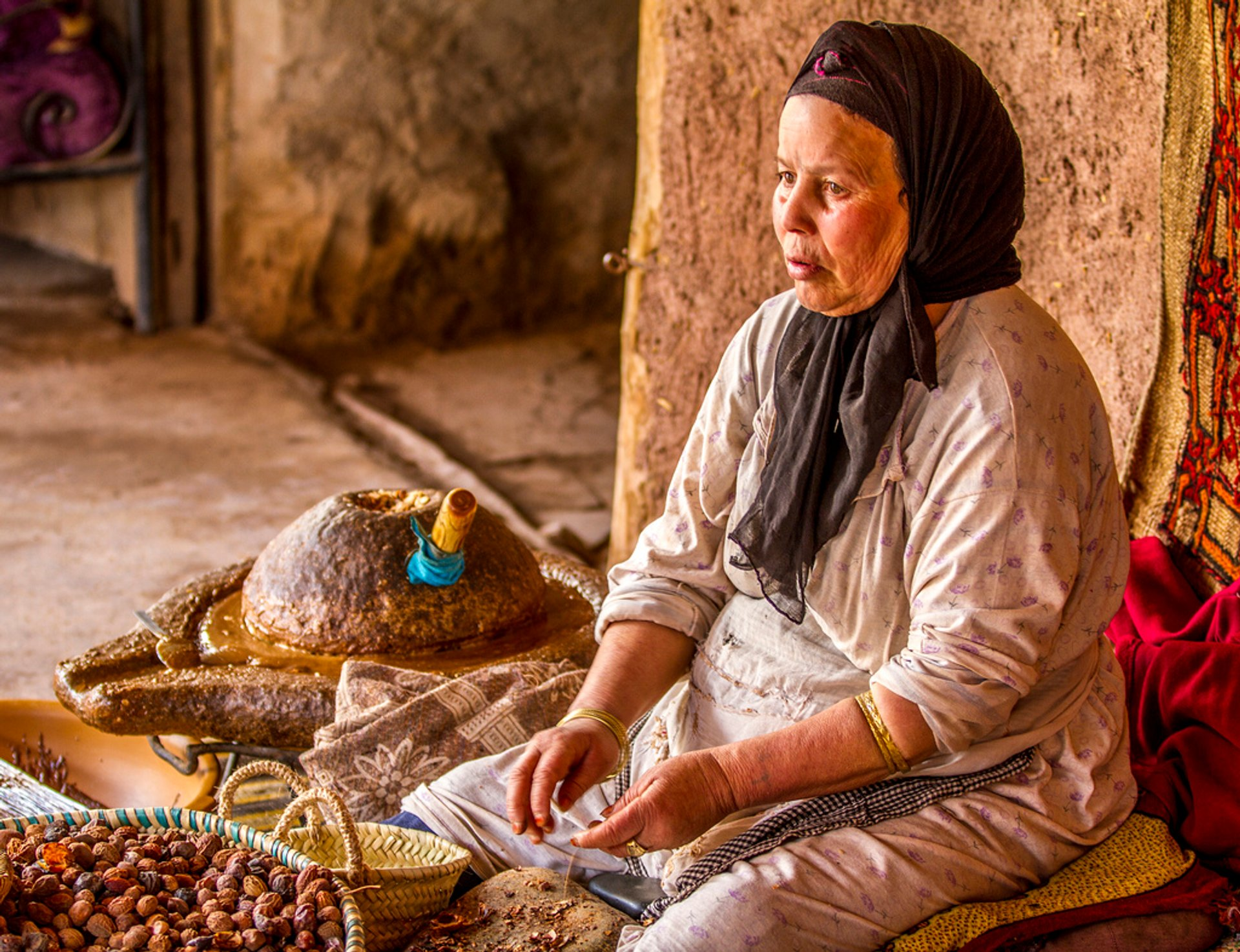 Best time for Argan Oil Harvest in Morocco 2020