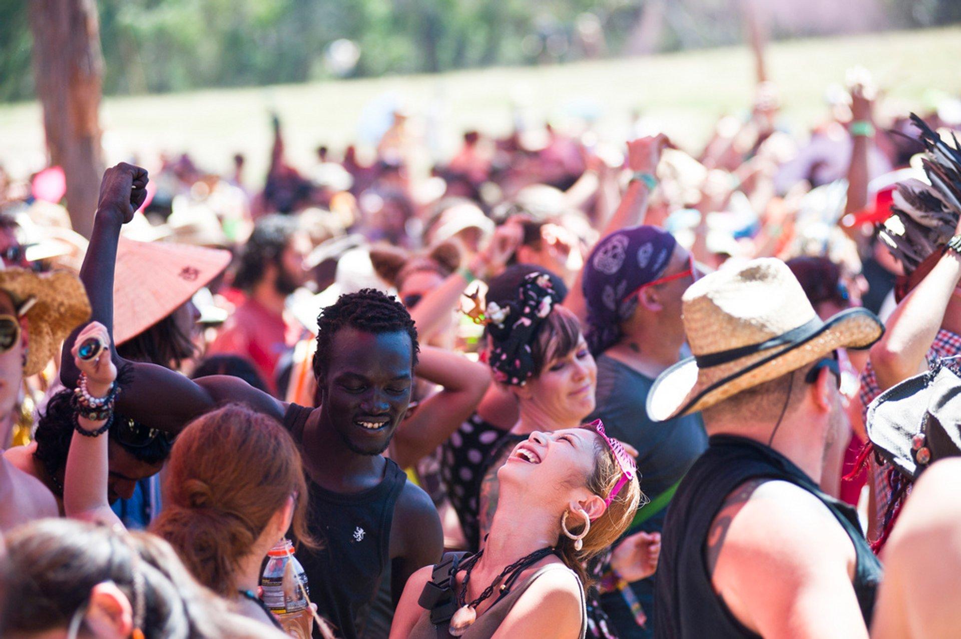Rainbow Serpent Festival in Victoria - Best Season 2019