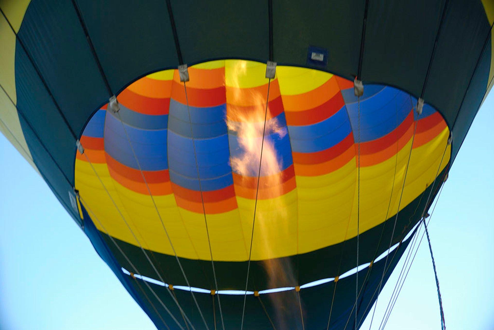 Temecula Valley Balloon & Wine Festival in California - Best Season 2020