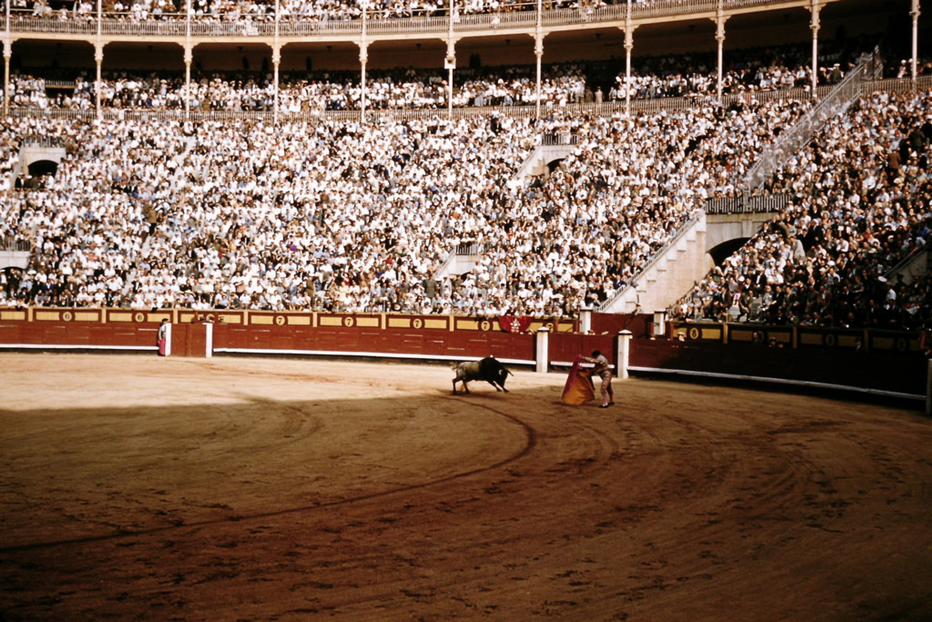 Best time for Bullfighting Season in Spain 2019