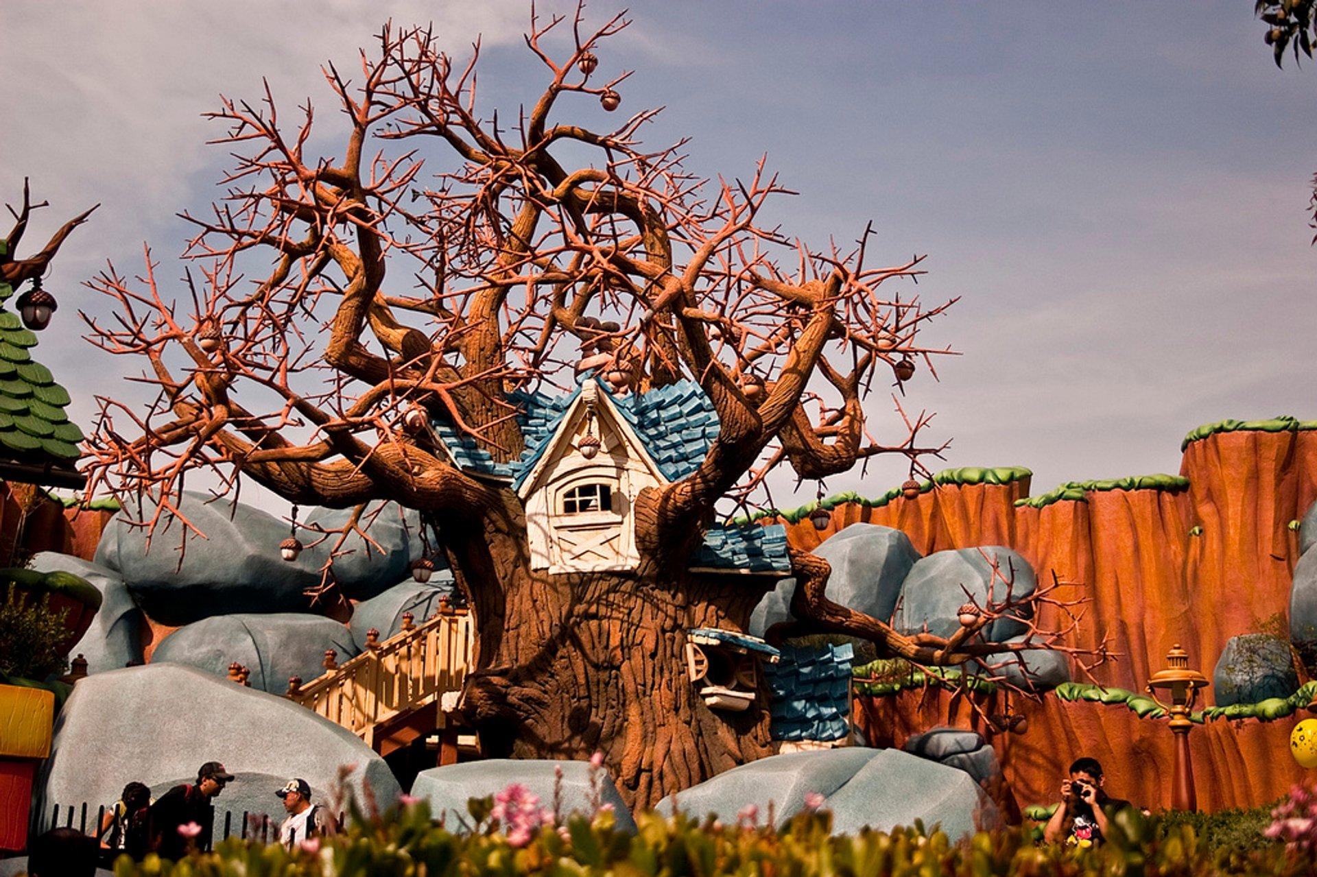 Disneyland Toontown