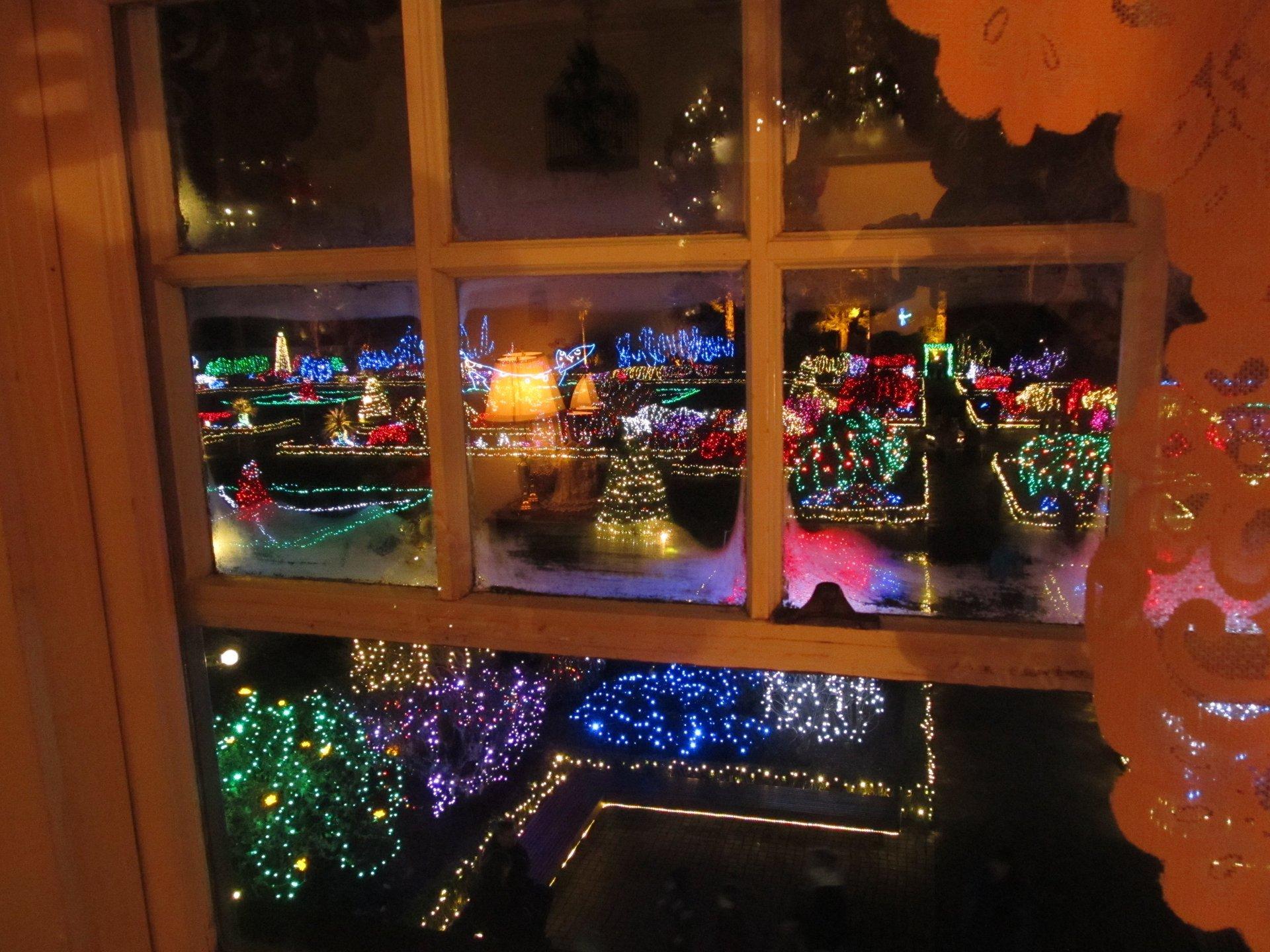 Holiday Lights at Shore Acres, Charleston 2020