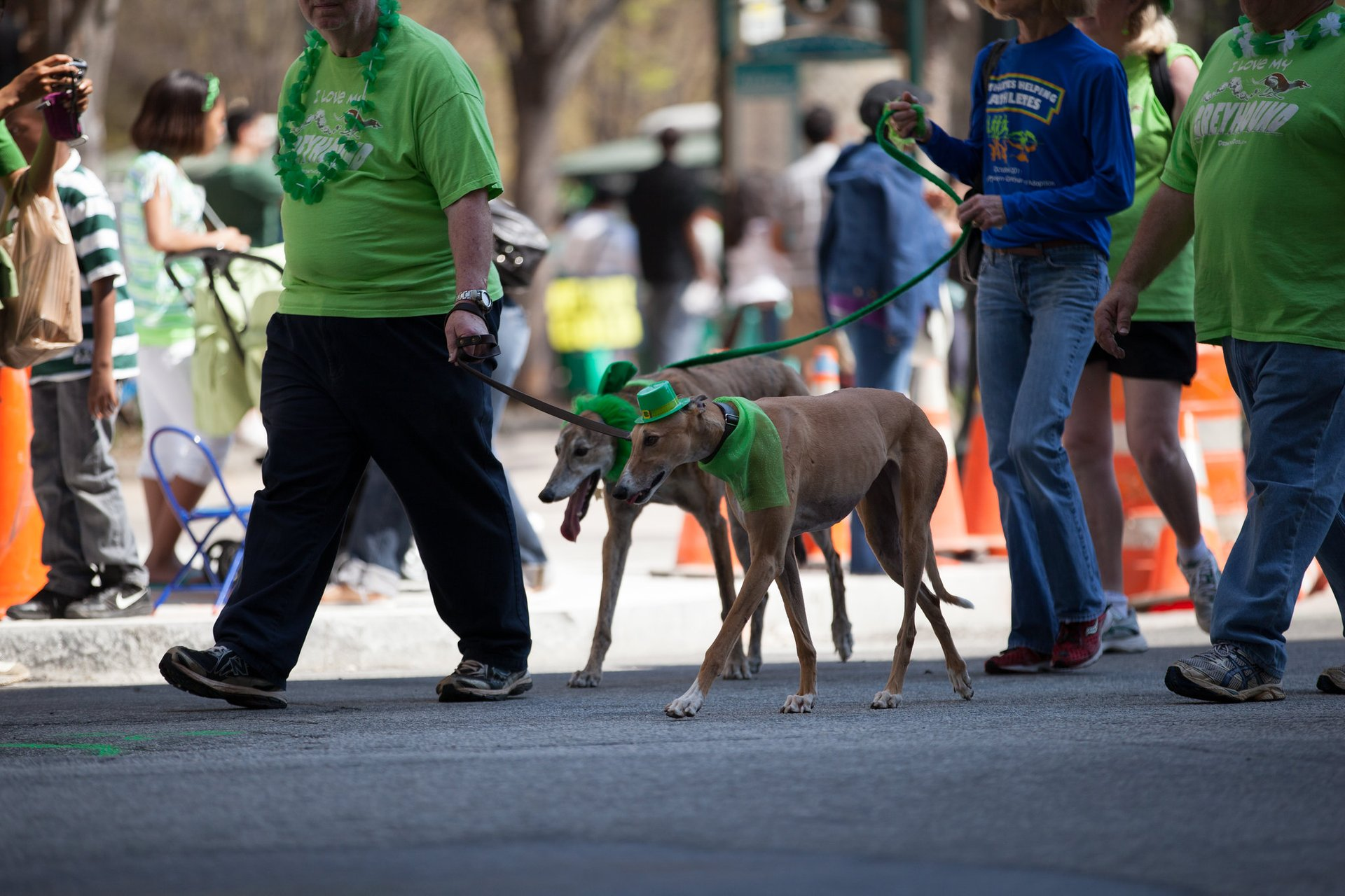 Atlanta St. Patrick's Parade in Atlanta - Best Season 2020