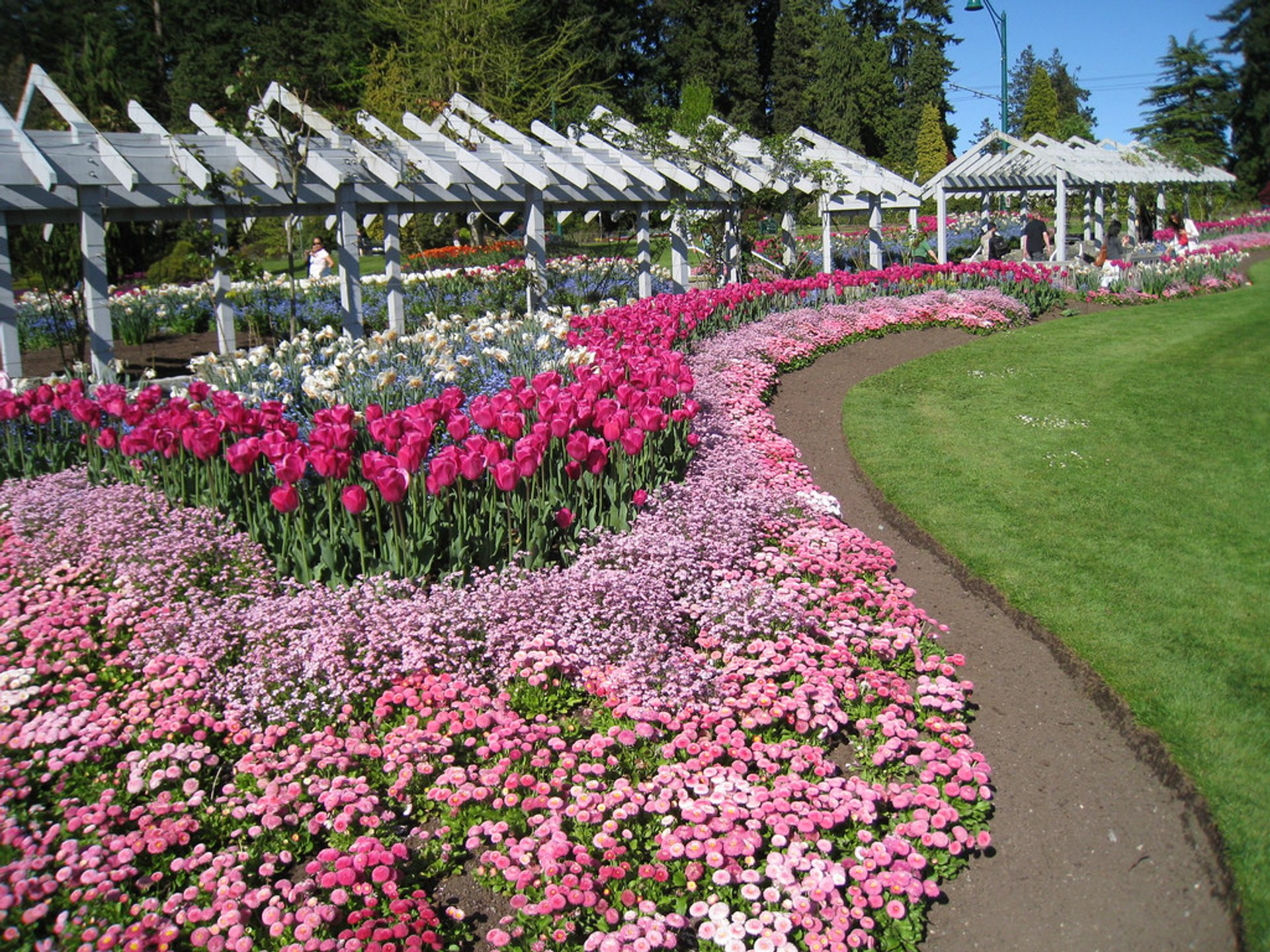Best time for Blooming Season in Vancouver