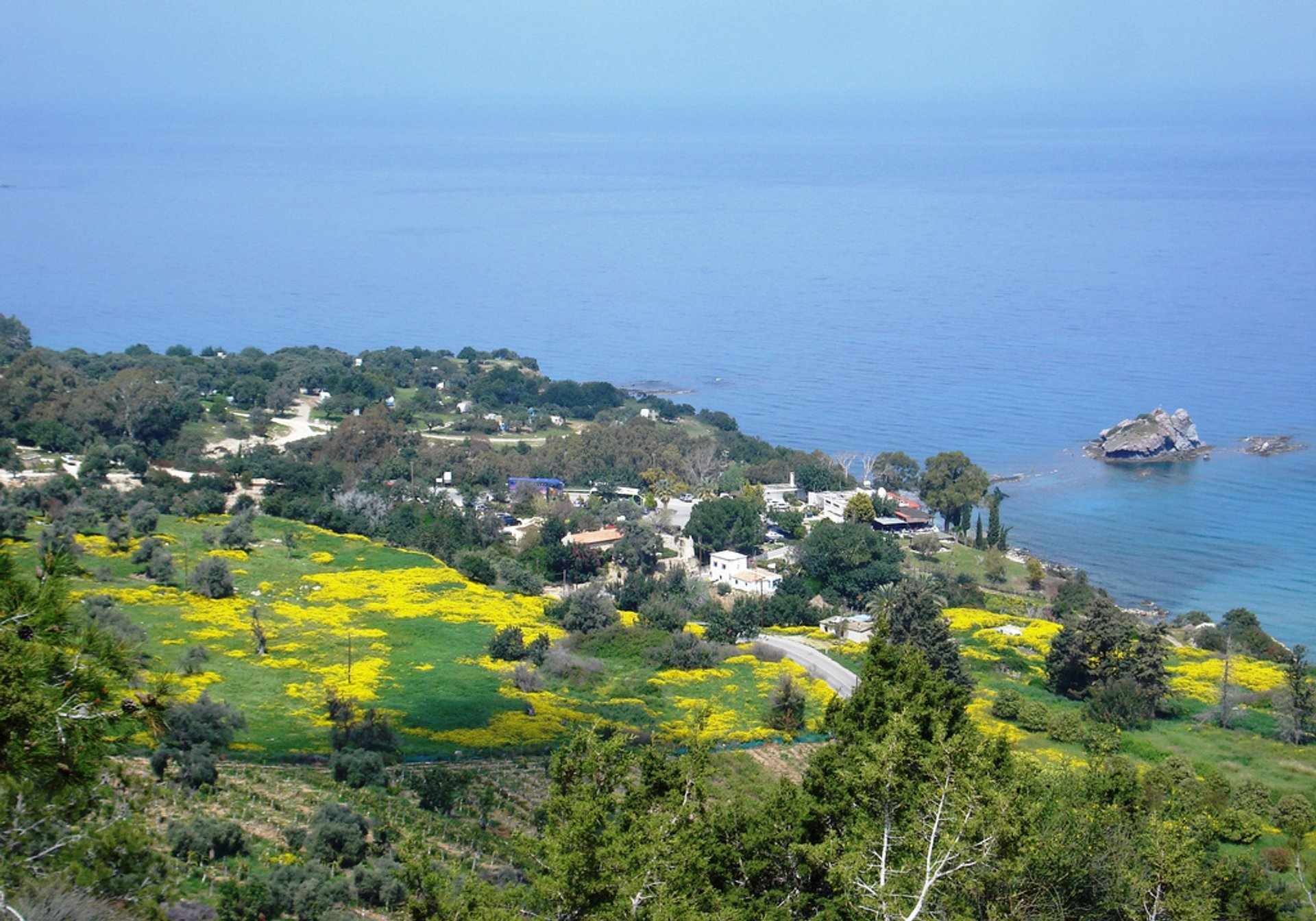 Best time for Aphrodite Trail Abloom in Cyprus 2020