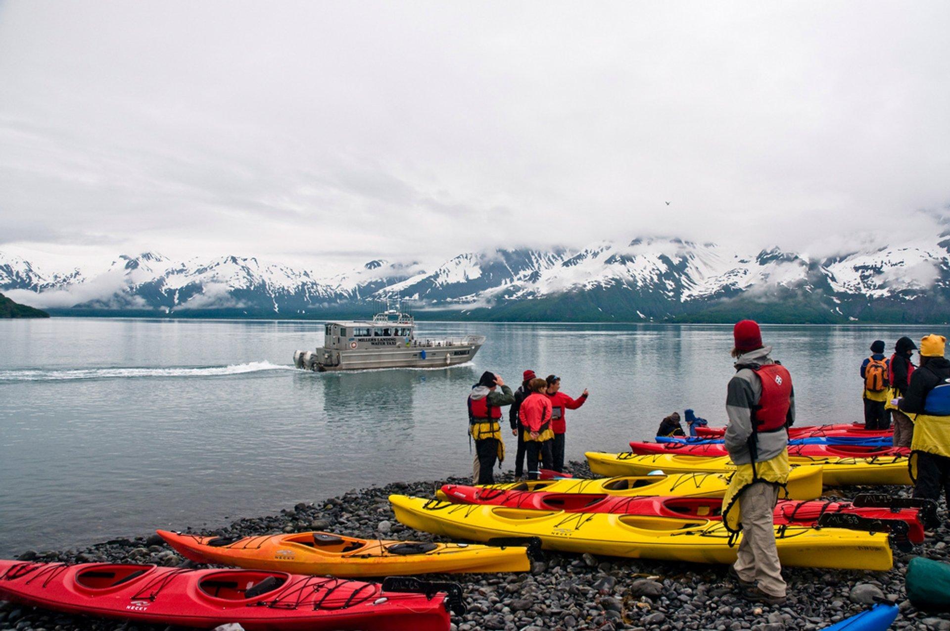 Aialik Bay, Kenai Fjords National Park, Seward, Alaska 2019