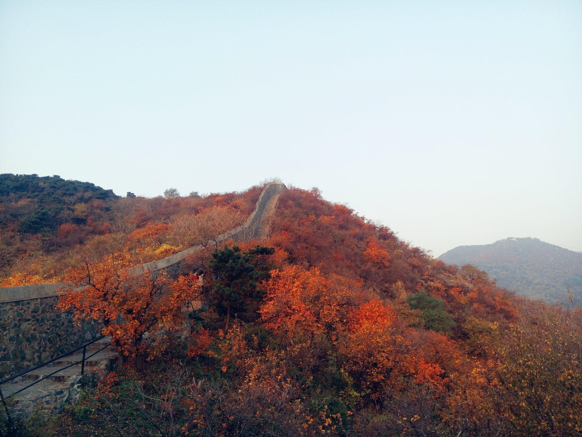 Best time for Red Leaves Festival at Fragrant Hill in Beijing 2019