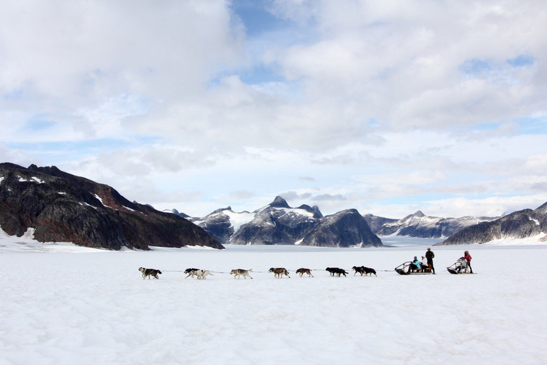Dog sledding on a glacier outside of Juneau, AK 2020