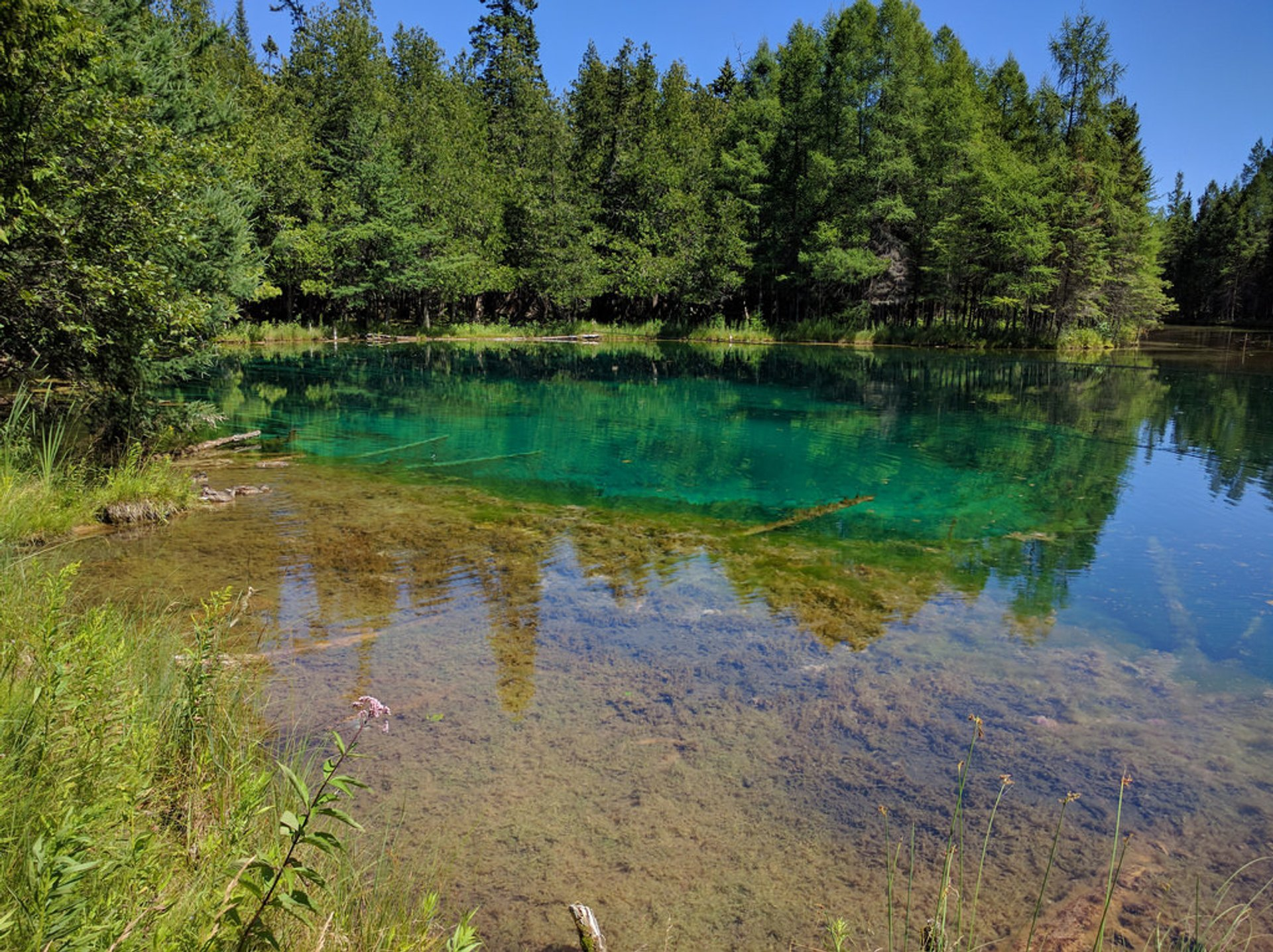 Kitch-Iti-Kipi (The Big Spring) in Midwest - Best Season 2020