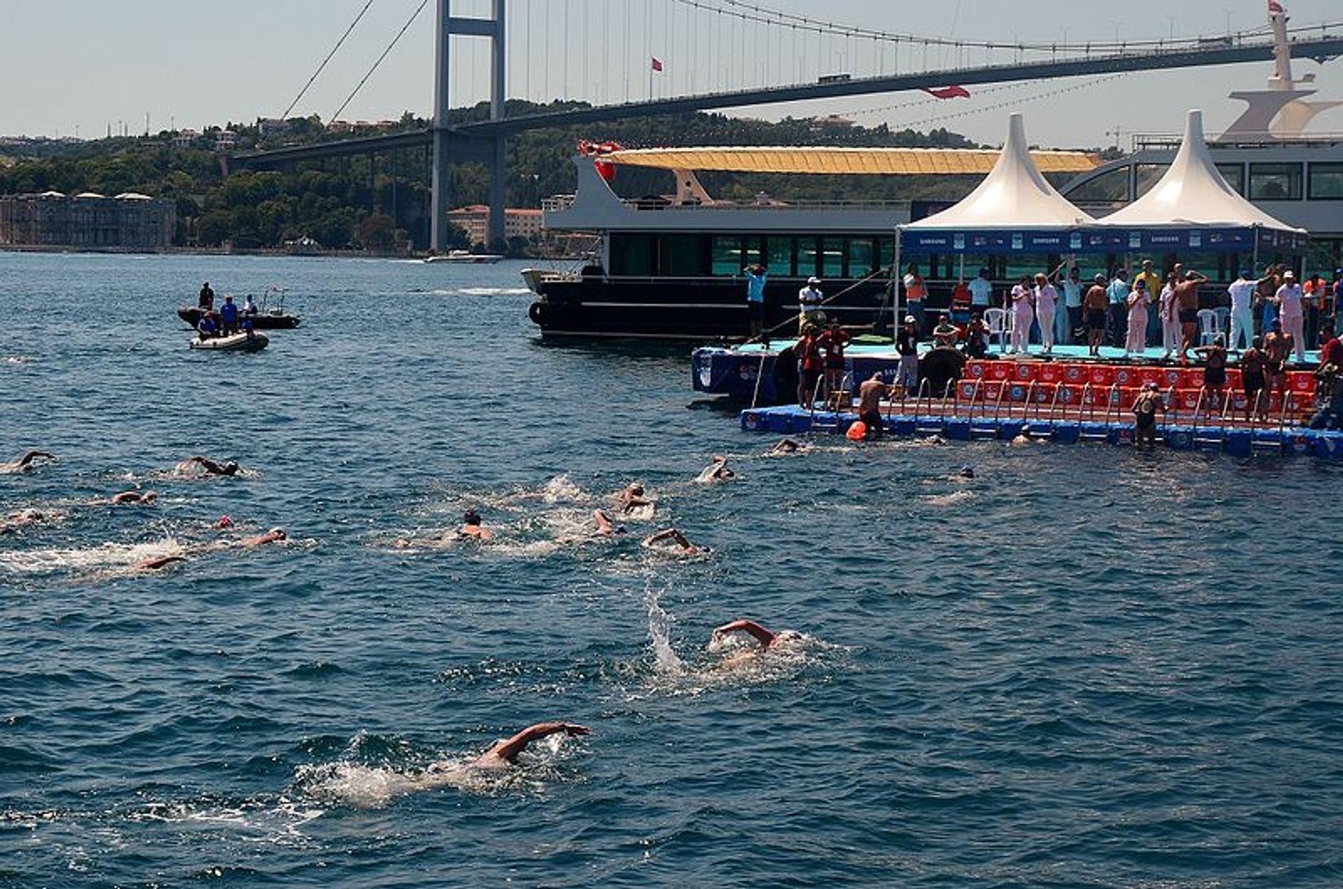 Finish phase at the 2016 Bosphorus Intercontinental Swim in Kuruçeşme