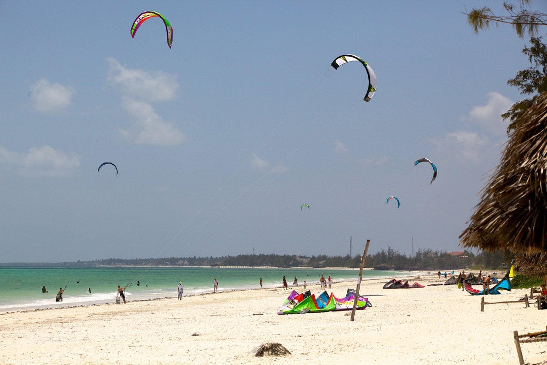 Beach in Paje, Zanzibar Island 2020