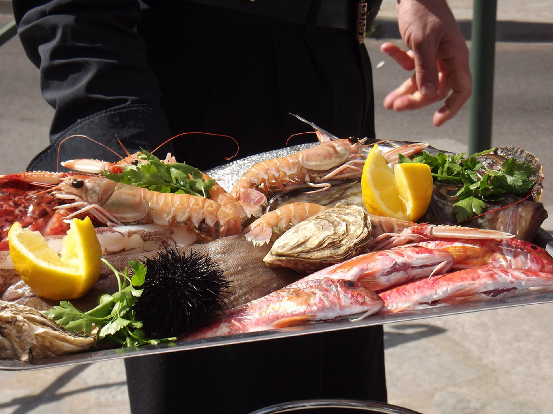 Best time to see Fish and Seafood Festival in Corsica 2019