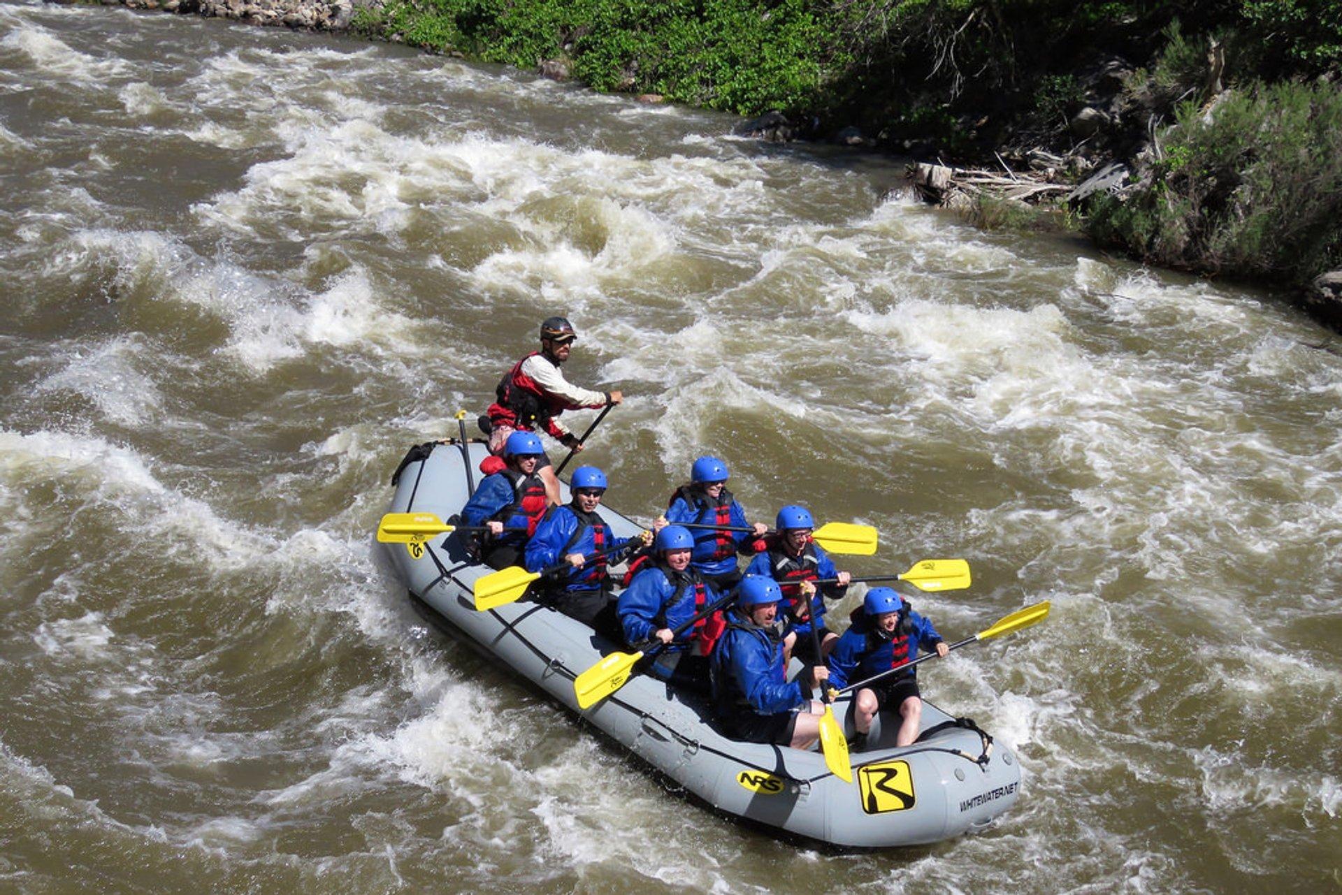 Arkansas River Rafting 2020