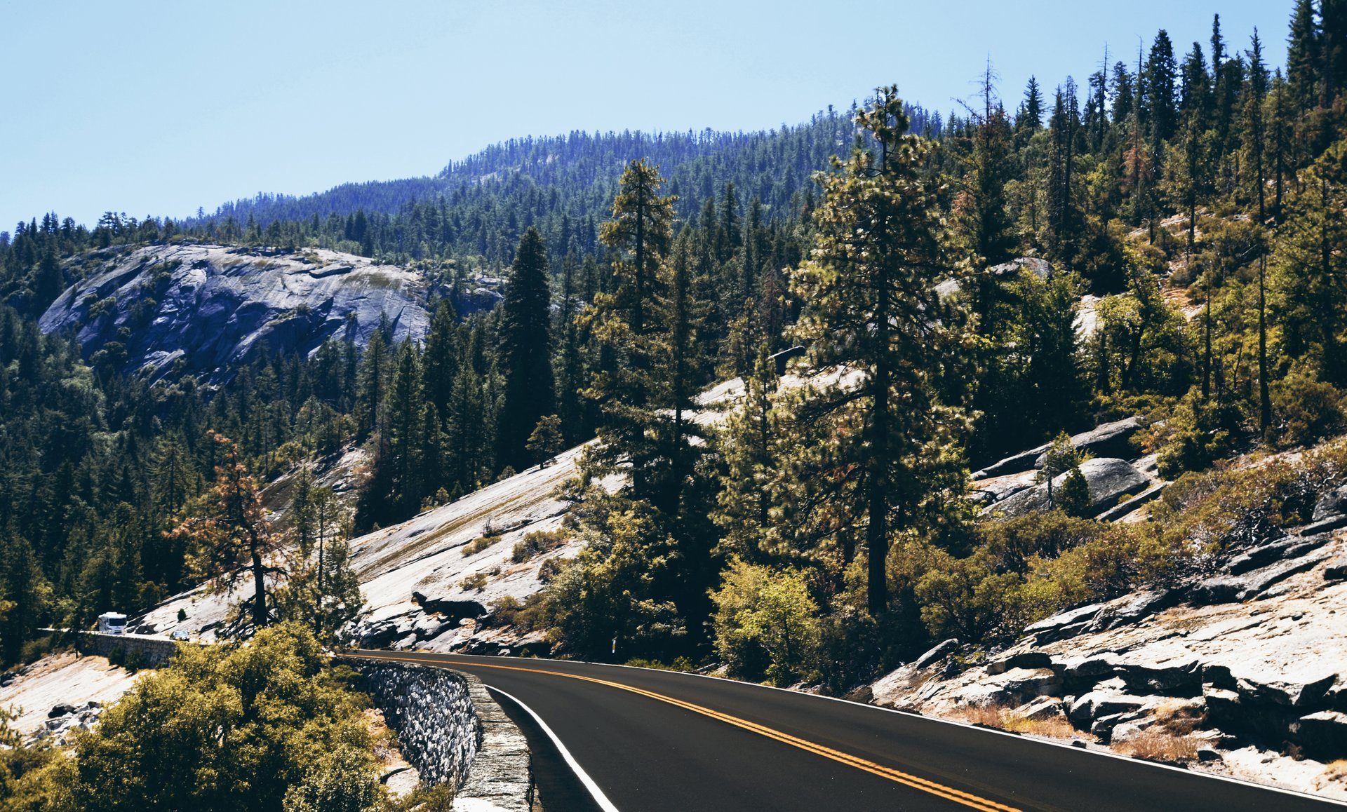 The road of Yosemite National Park 2019