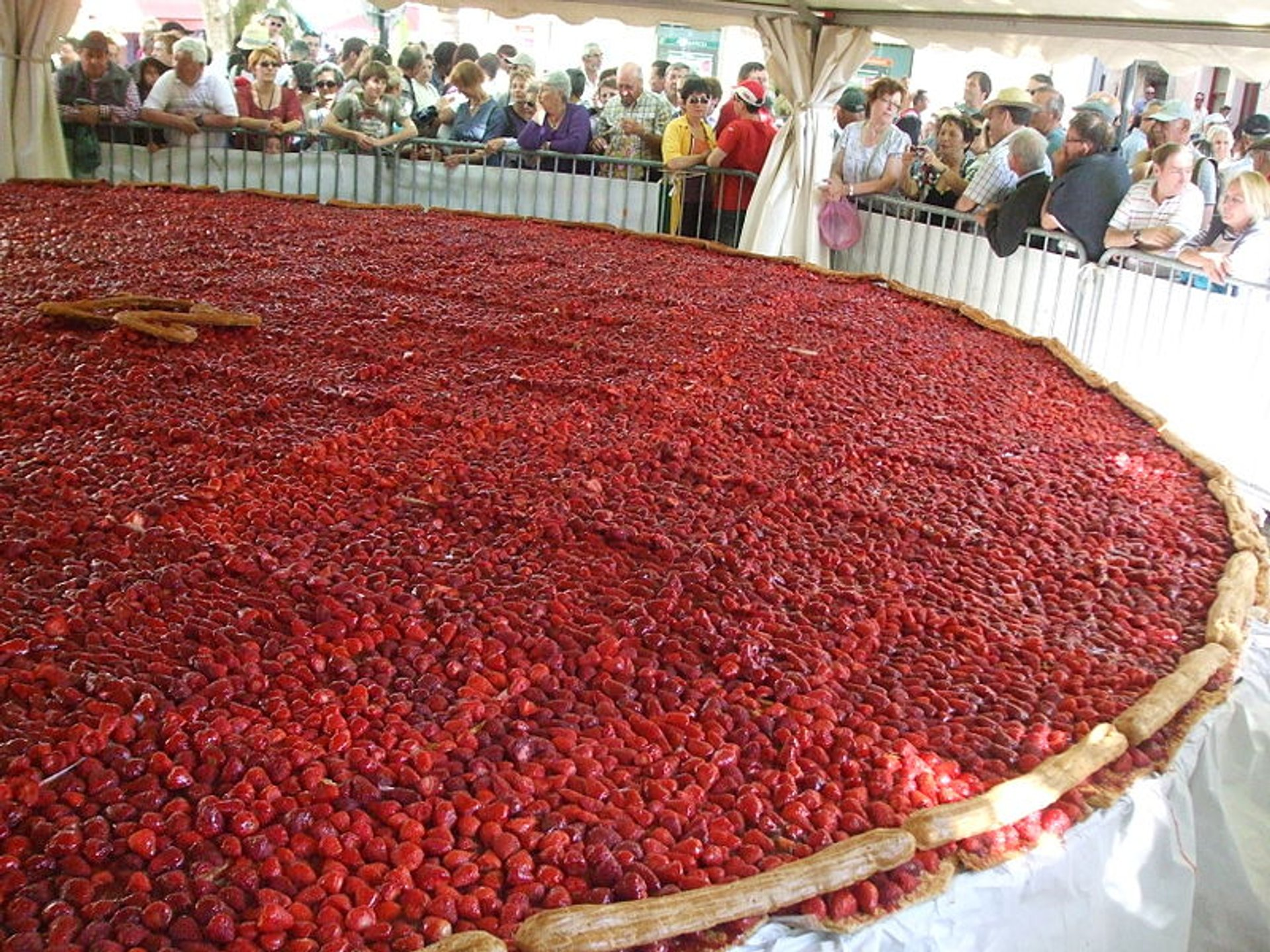 Giant strawberry cake with 8 m diameter 2020