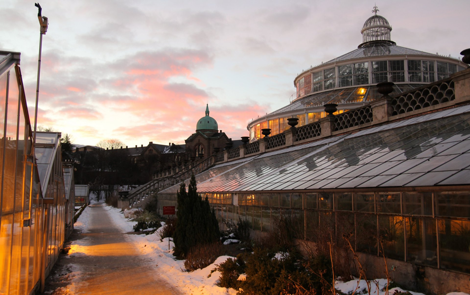 Best time to see Botanisk Have (Botanical Garden) in Copenhagen 2020