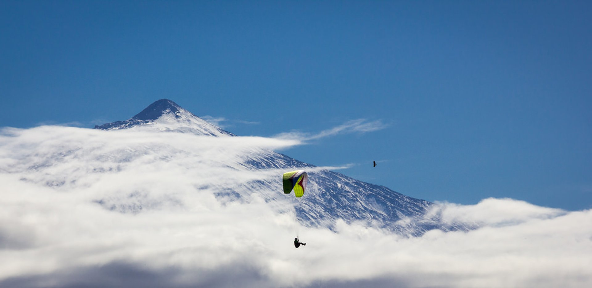 The background mountain is Mount Teide dormant volcano (3718 m) in the island of Tenerife 2020