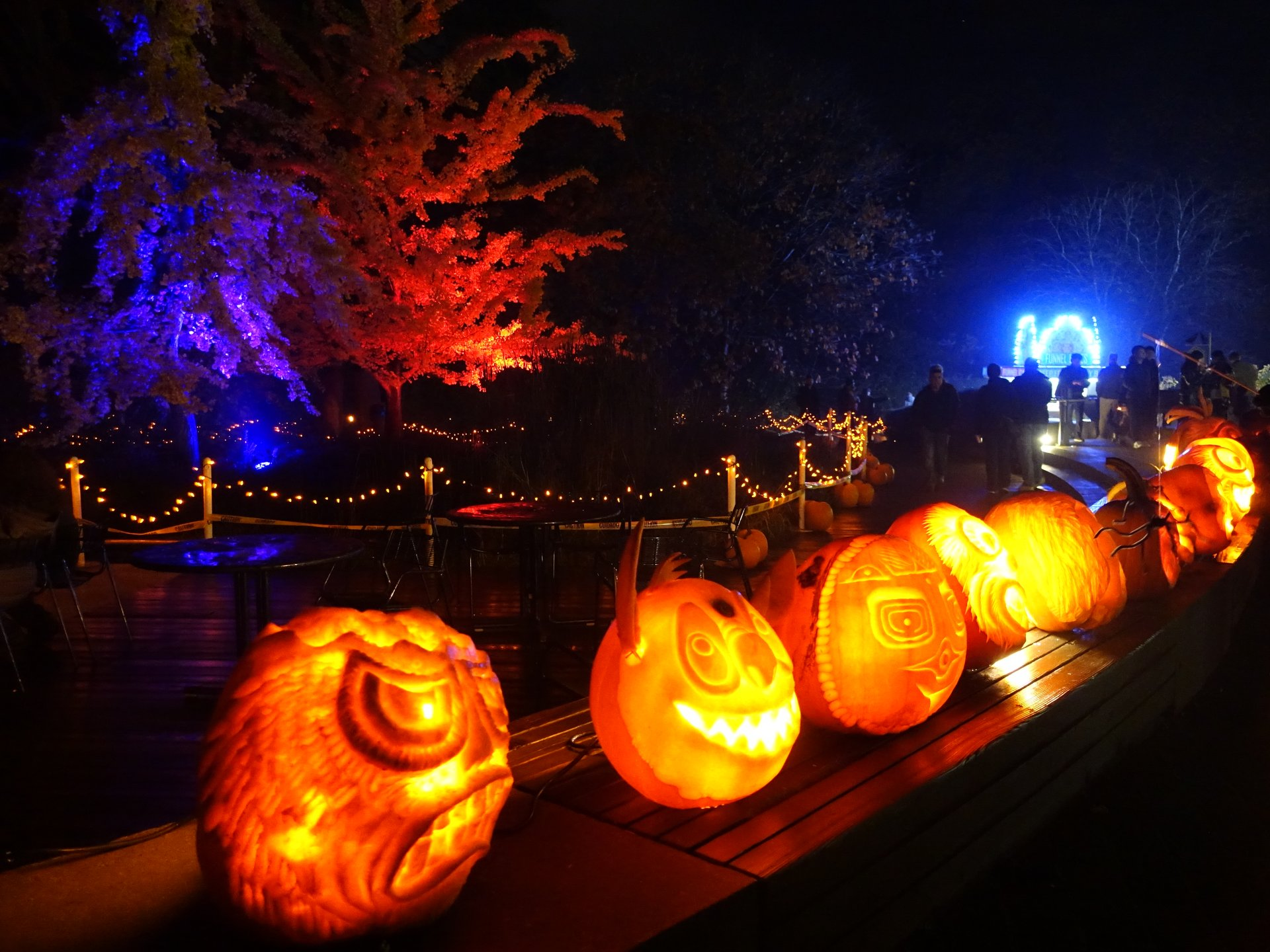 VanDusen Glow in the Garden 2020