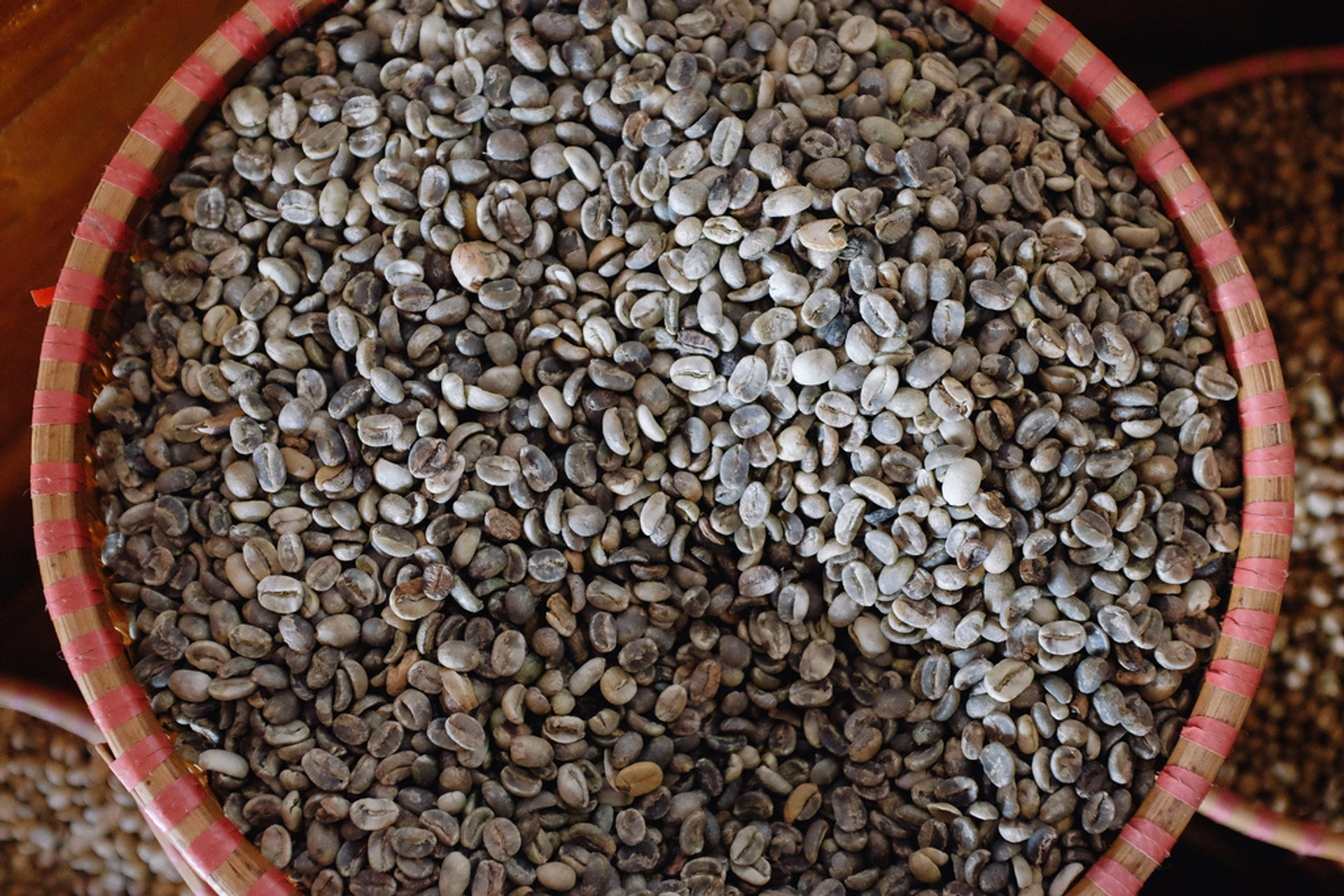 Pre-roasted Coffee Beans 2019