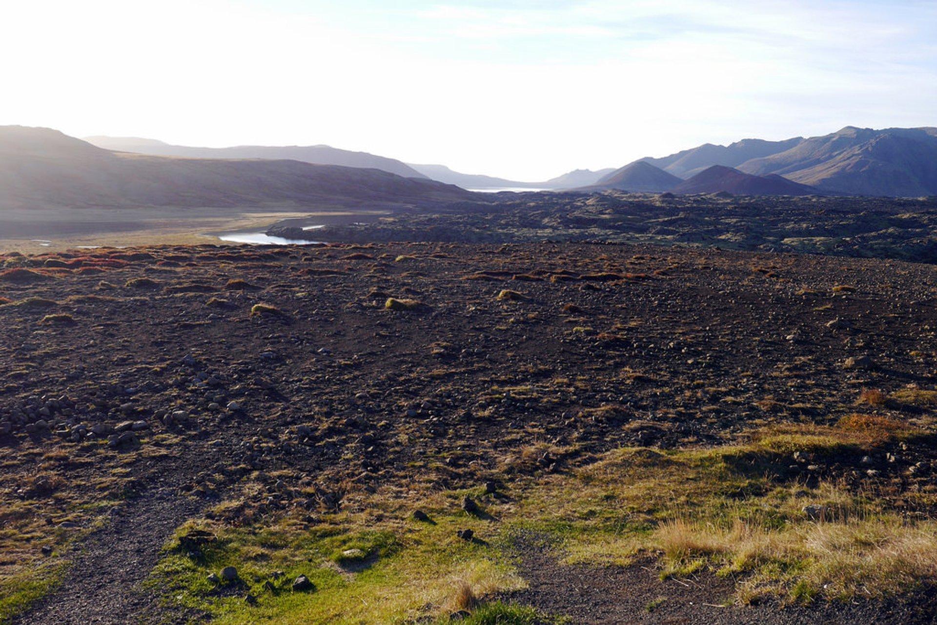 Lava Field on Snæfellsnes Peninsula 2020
