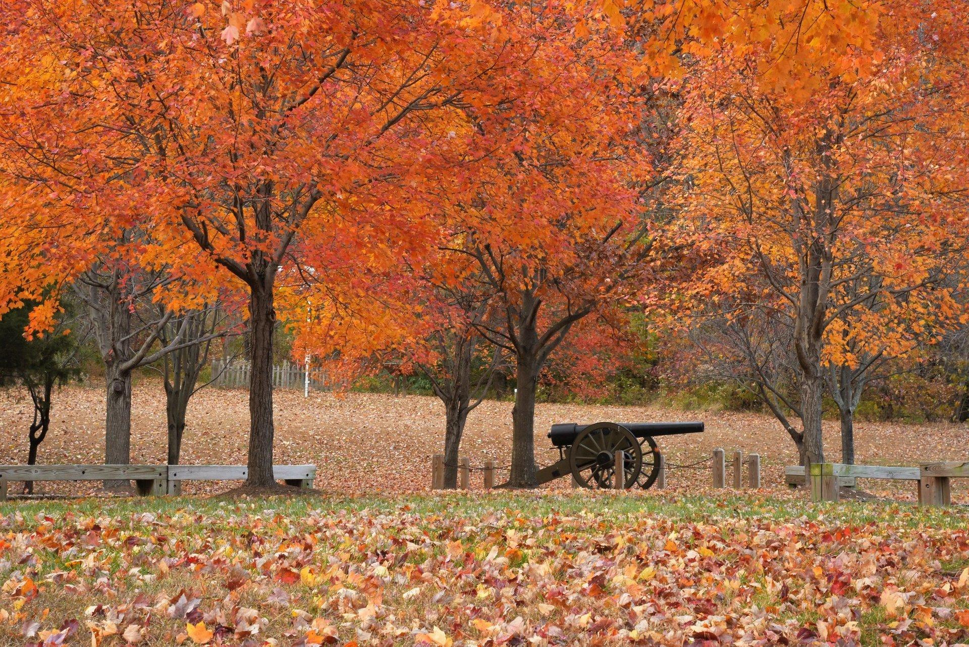 Leesylvania State Park 2020