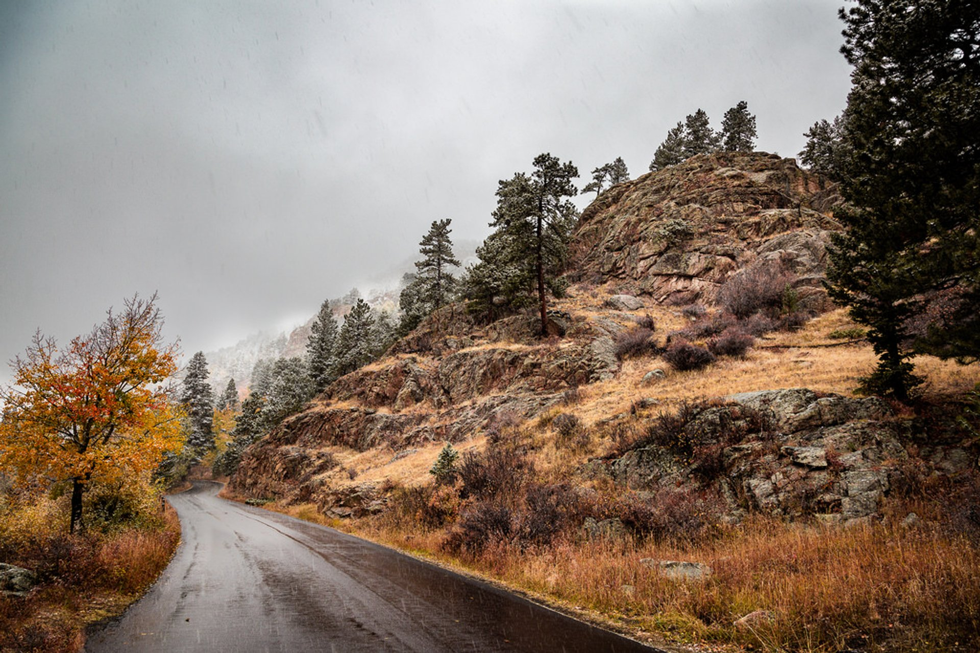 Old Fall River Road in Colorado 2019 - Best Time